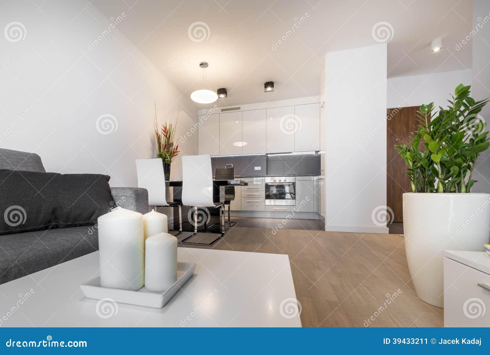 Conception int rieure de salon de luxe moderne image stock image du divan luxe 39433211 for Outil de conception salon