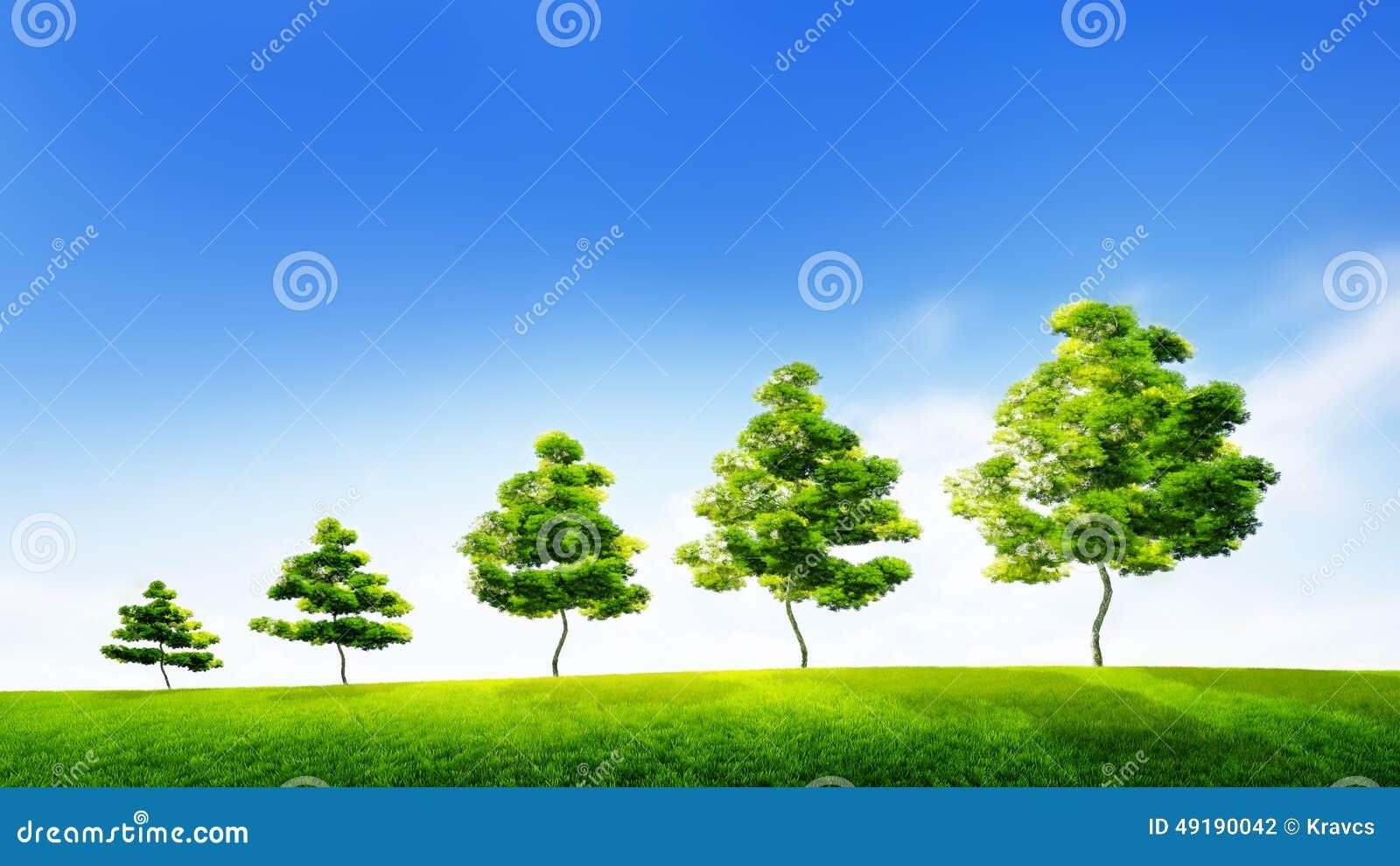 Concepto de crecimiento sostenible en negocio o conse ambiental
