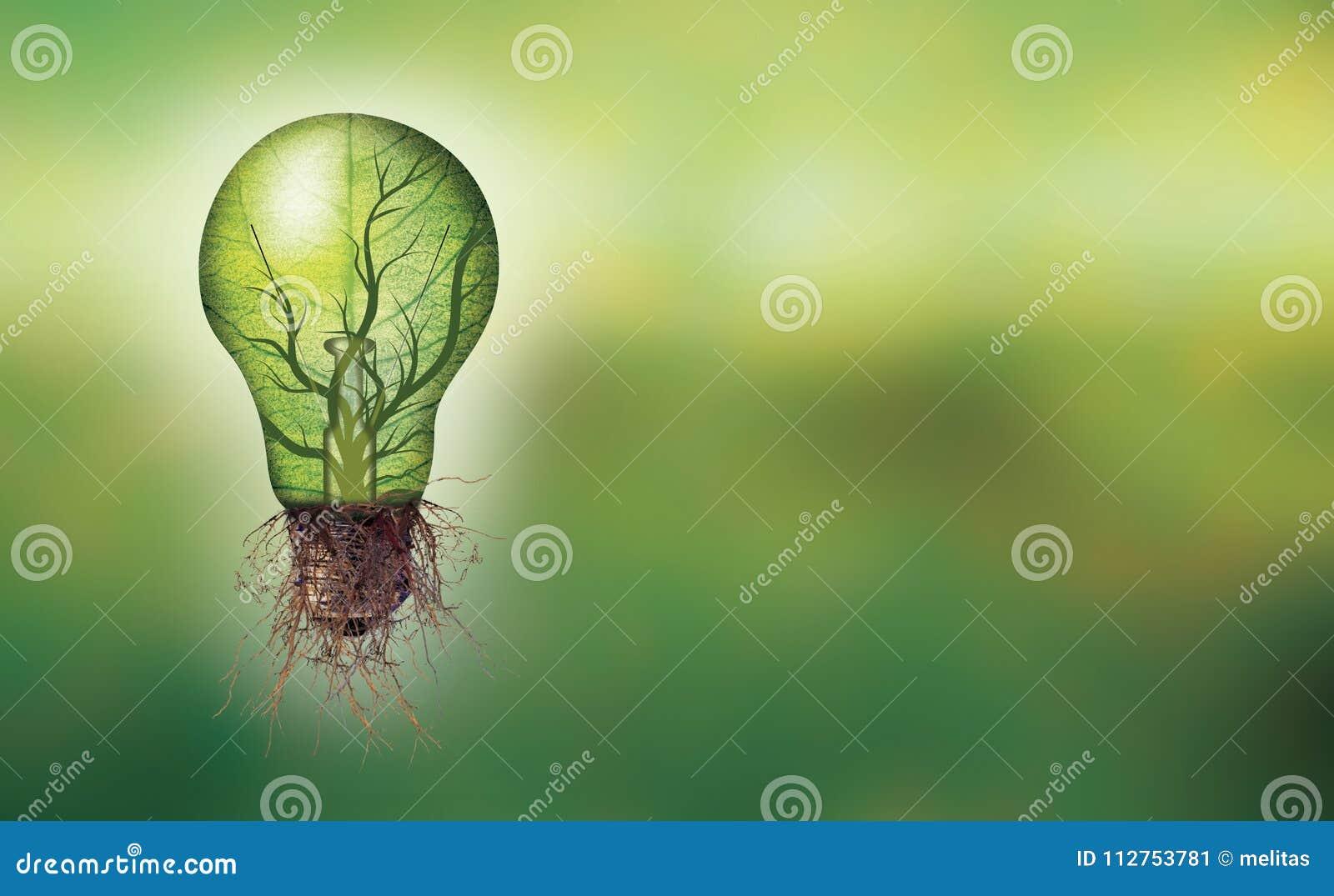 Concepto de la energía renovable de la bandera - bombilla de Eco con la hoja y ramas interiores y raíces
