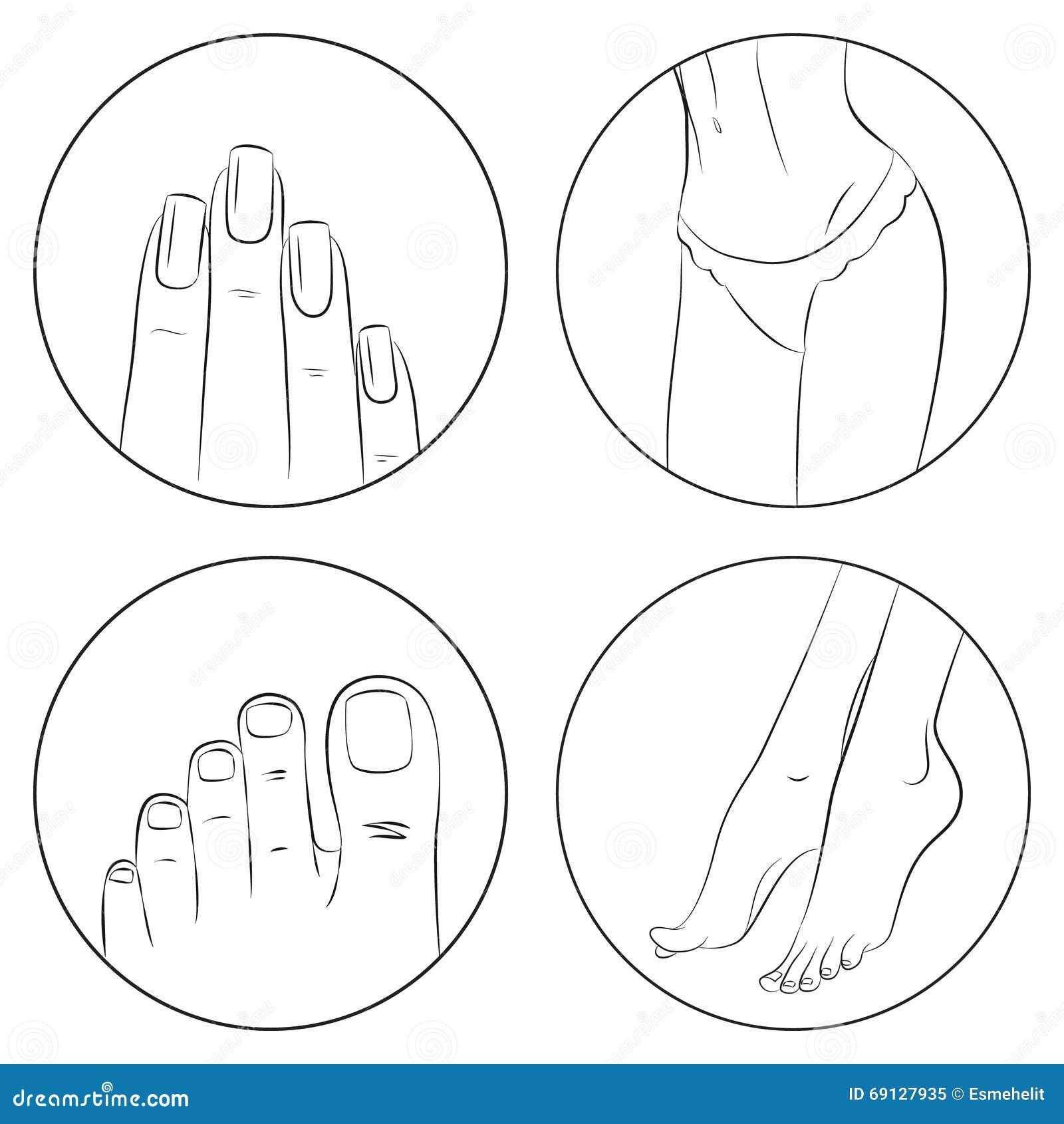 Concepto de la manicura, de la pedicura y del bodycare Sistema del icono