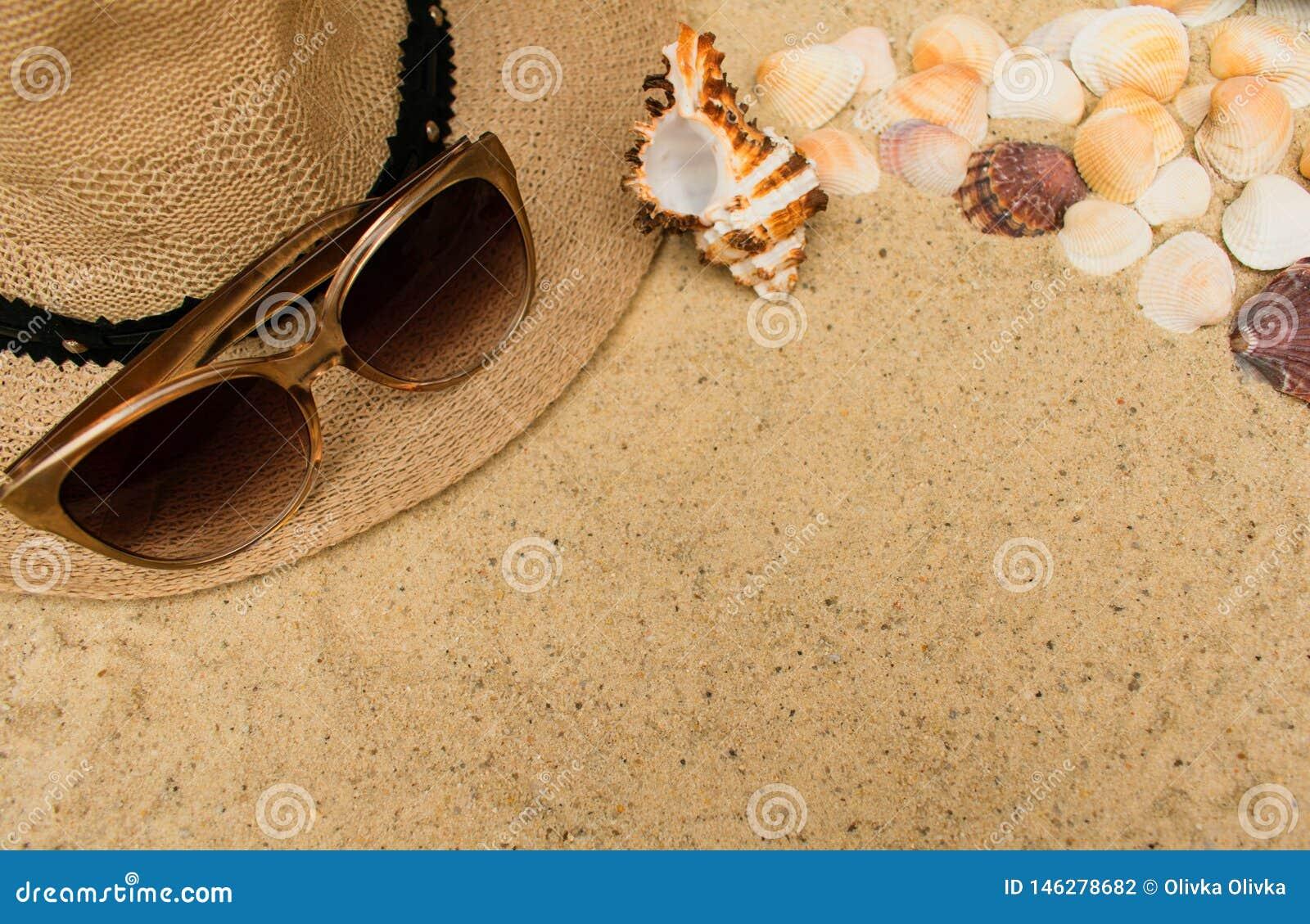 Concepto de las vacaciones de verano con las conchas marinas, el sombrero de la playa de las mujeres y las gafas de sol en fondo