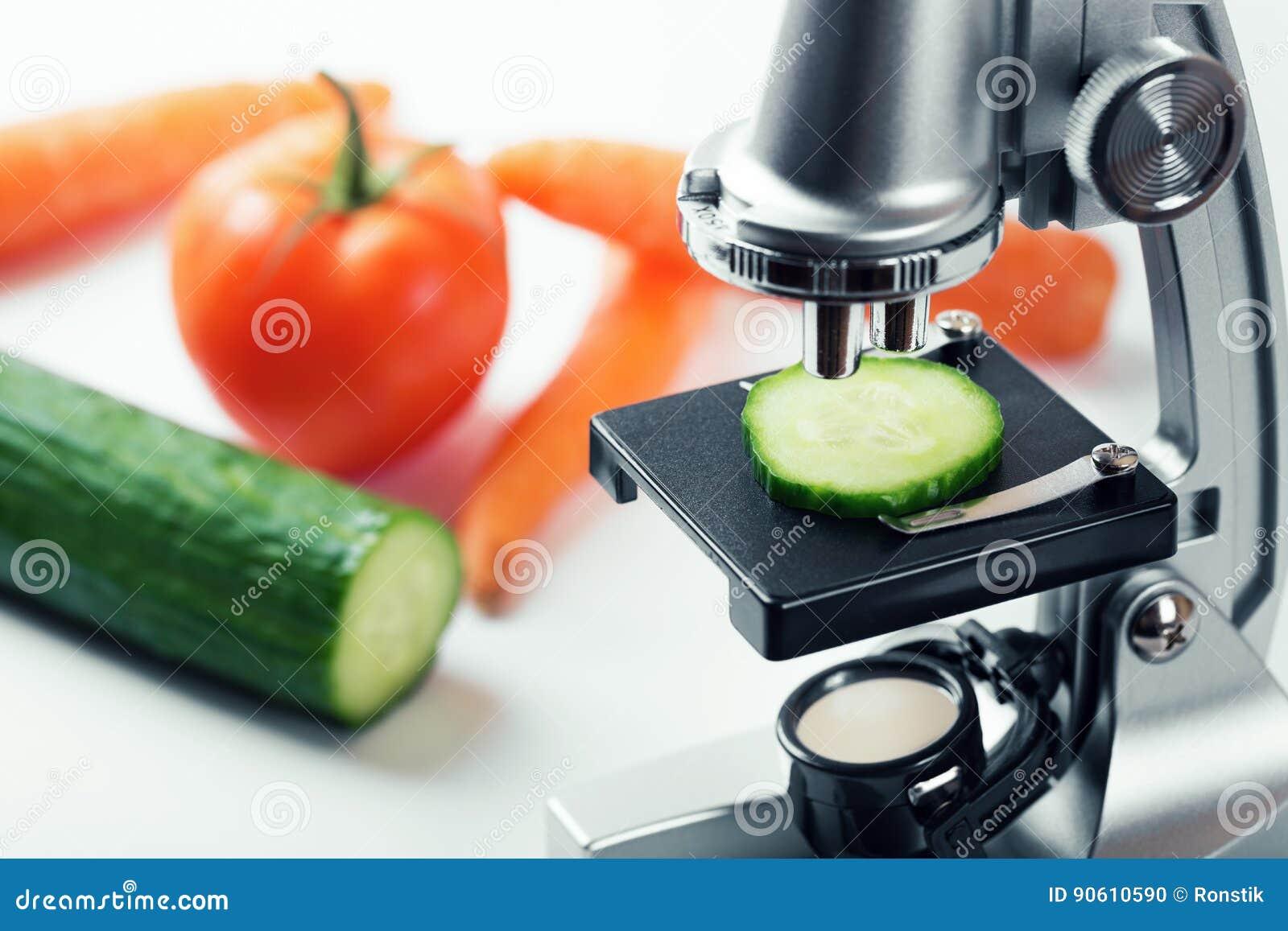 Concepto del control de calidad de la comida - inspección del pepino
