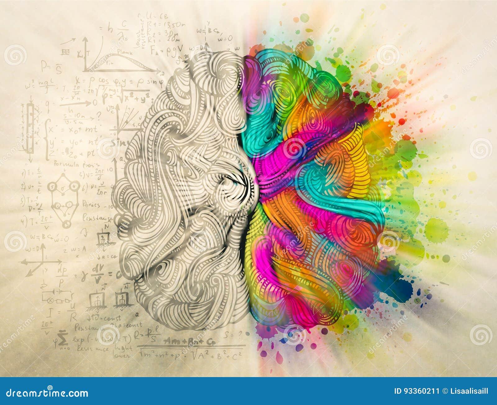 Concepto del garabato del cerebro sobre lado derecho creativo y lado izquierdo lógico