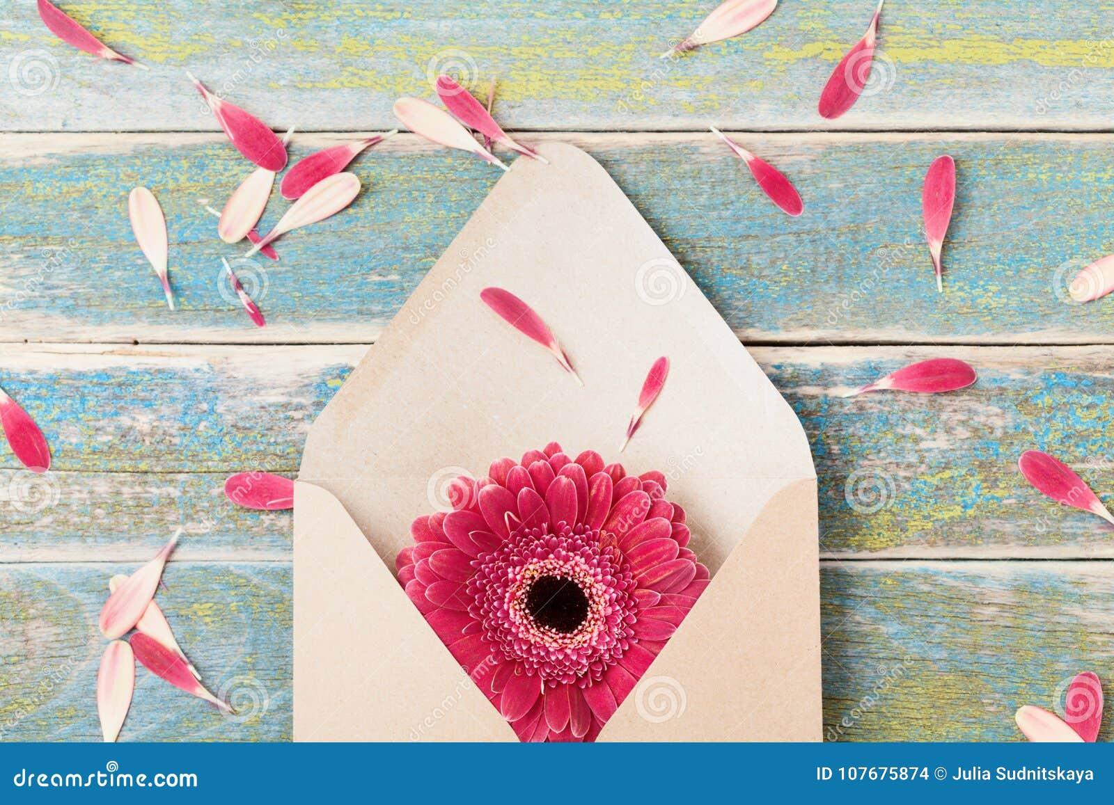 Concepto del presente o del mensaje del regalo con la sola flor del gerbera en el sobre de Kraft Tarjeta de felicitación el día d