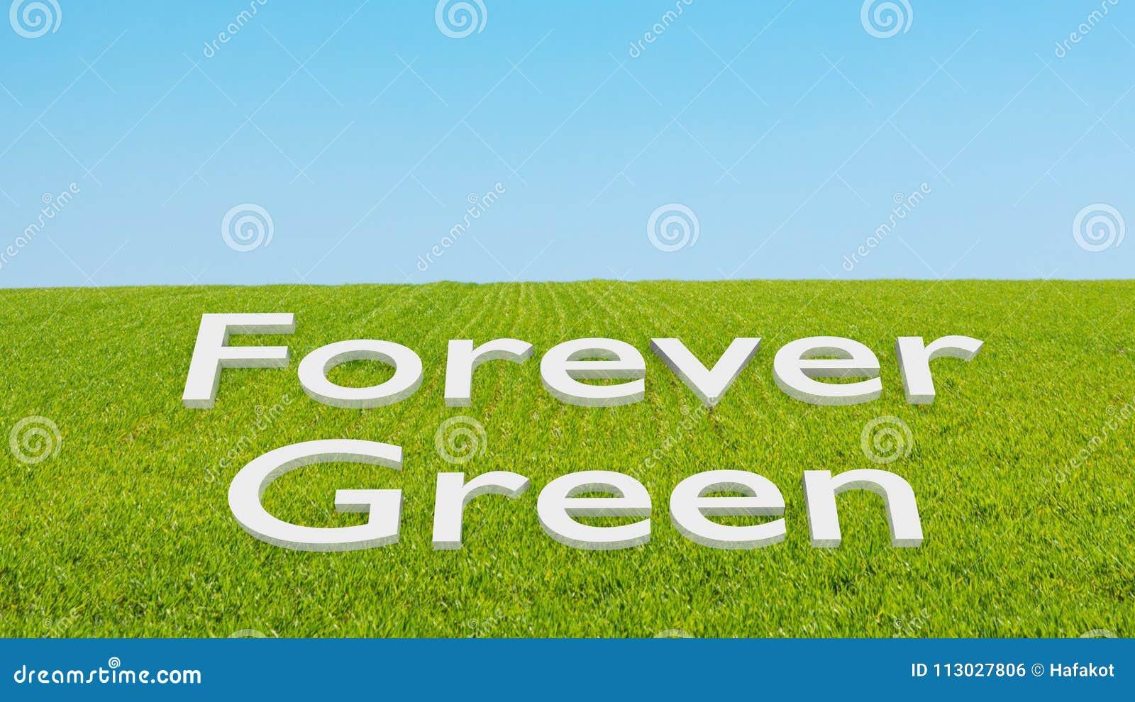 Concepto para siempre verde