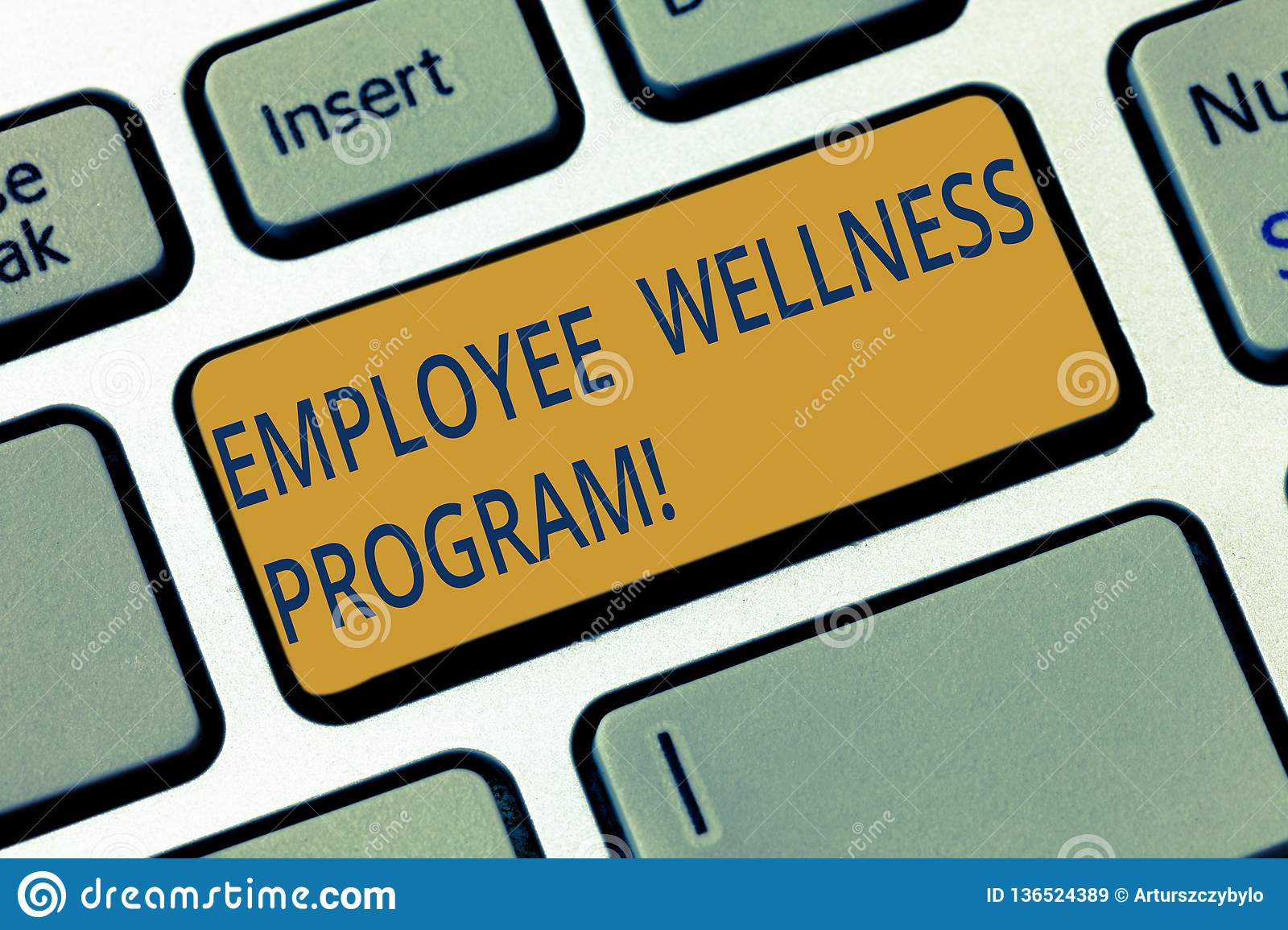 Conceptual hand writing showing Employee Wellness Program. Business photo showcasing Help improve the health of its labor force