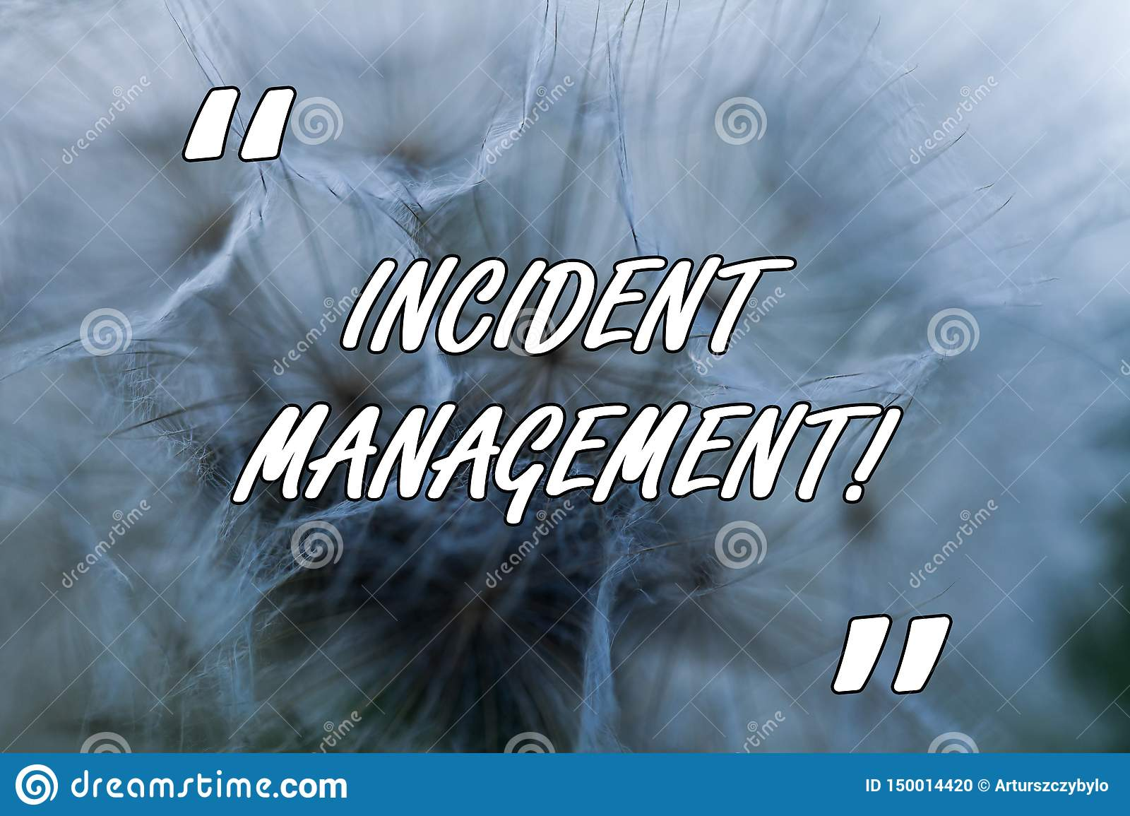 Conceptual hand writing showing Incident Management. Business photo text Process to return Service to Normal Correct