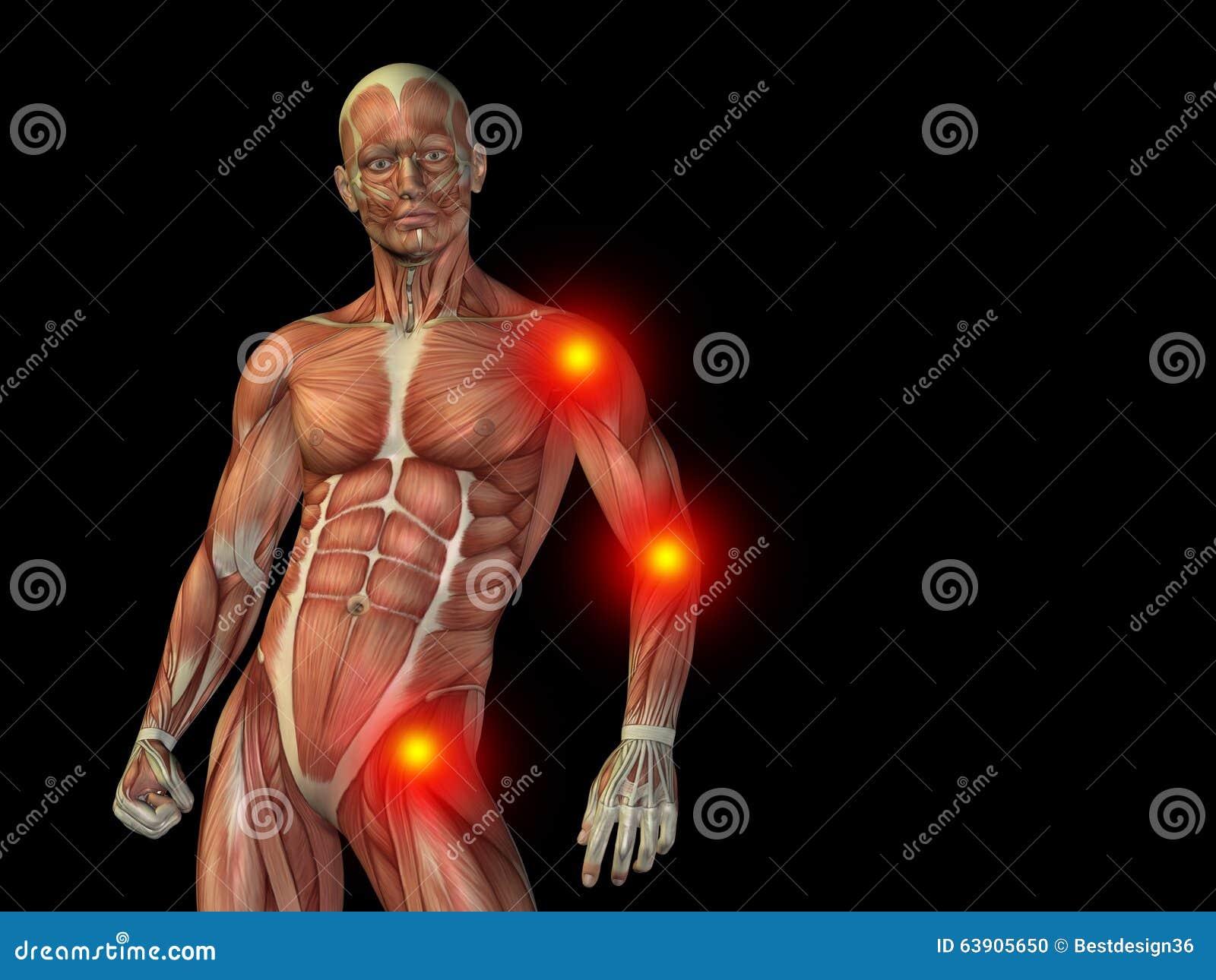 Conceptual Human Body Anatomy Pain On Black Stock Photo - Image of ...