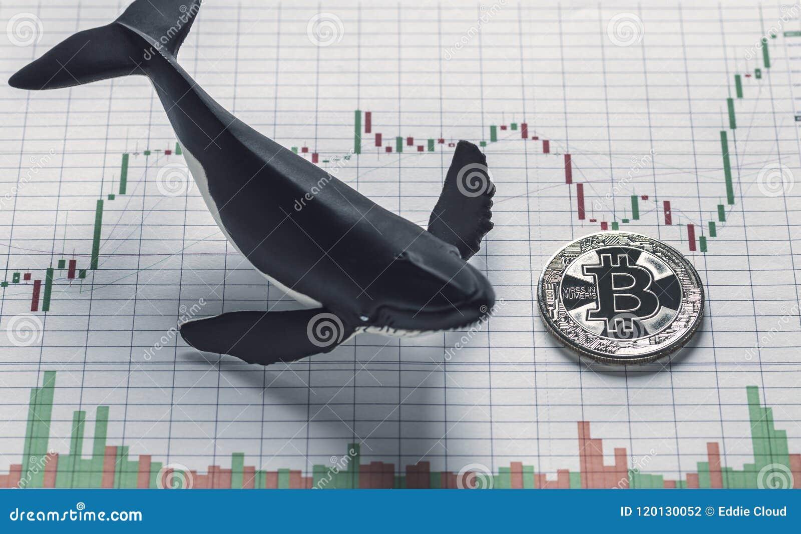 Bitcoin Whale Holder Conceptual Image