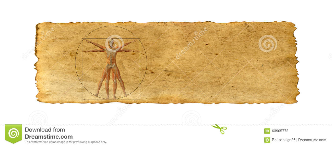 Conceptual vitruvian human body drawing on old paper background