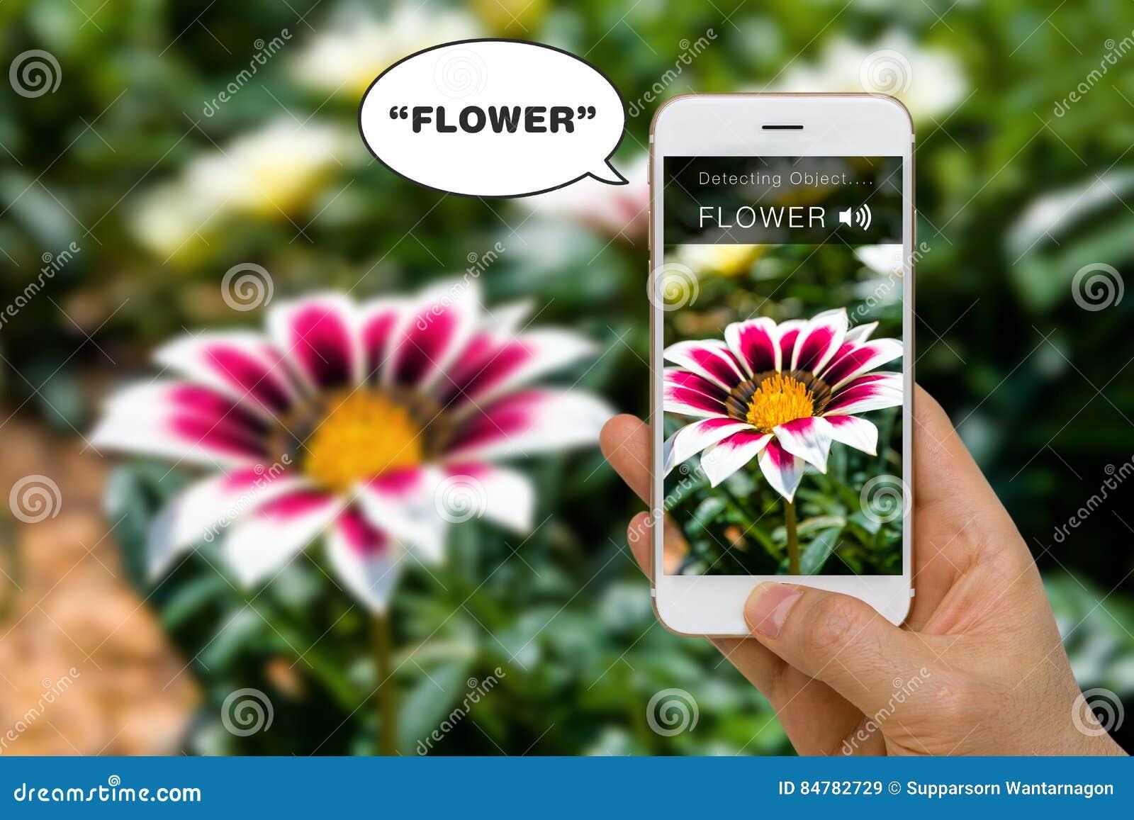 Concetto cieco di App di assistenza che dice fuori parola per l handicap usando Smartphone