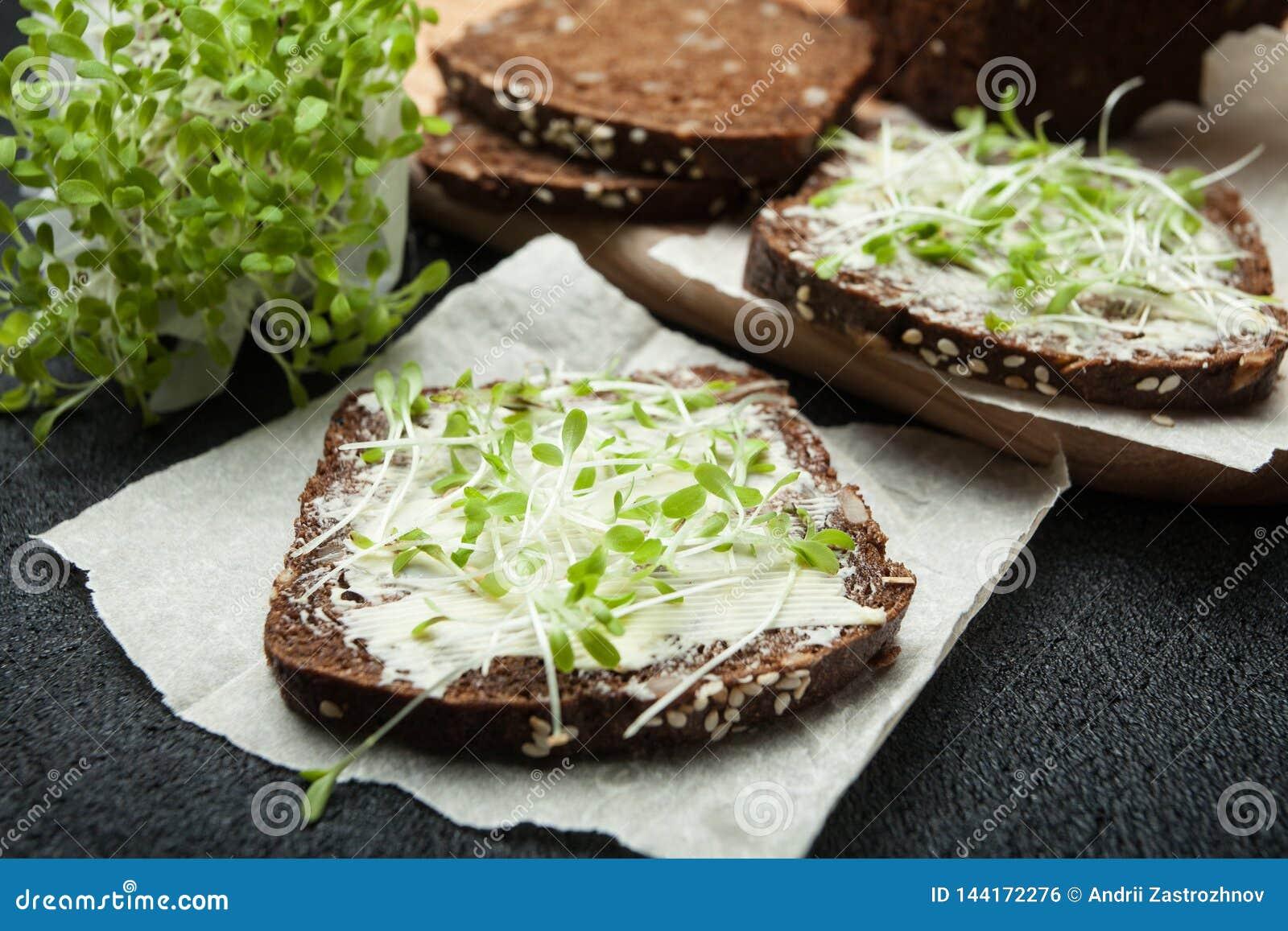 Concetto del vegetariano e di cibo sano Micro insalata di verdi e pane nero