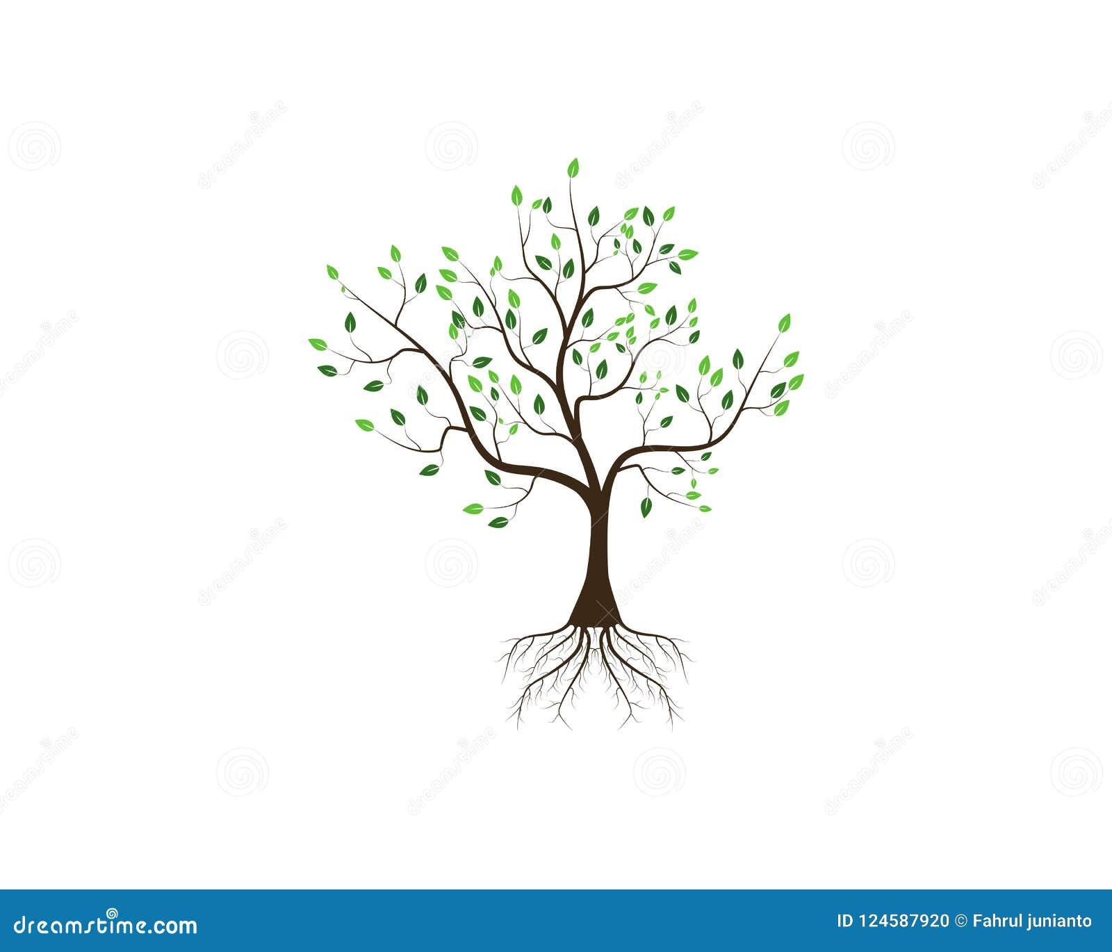 Concetto dell icona dell albero di un illustrazione stilizzata di vettore