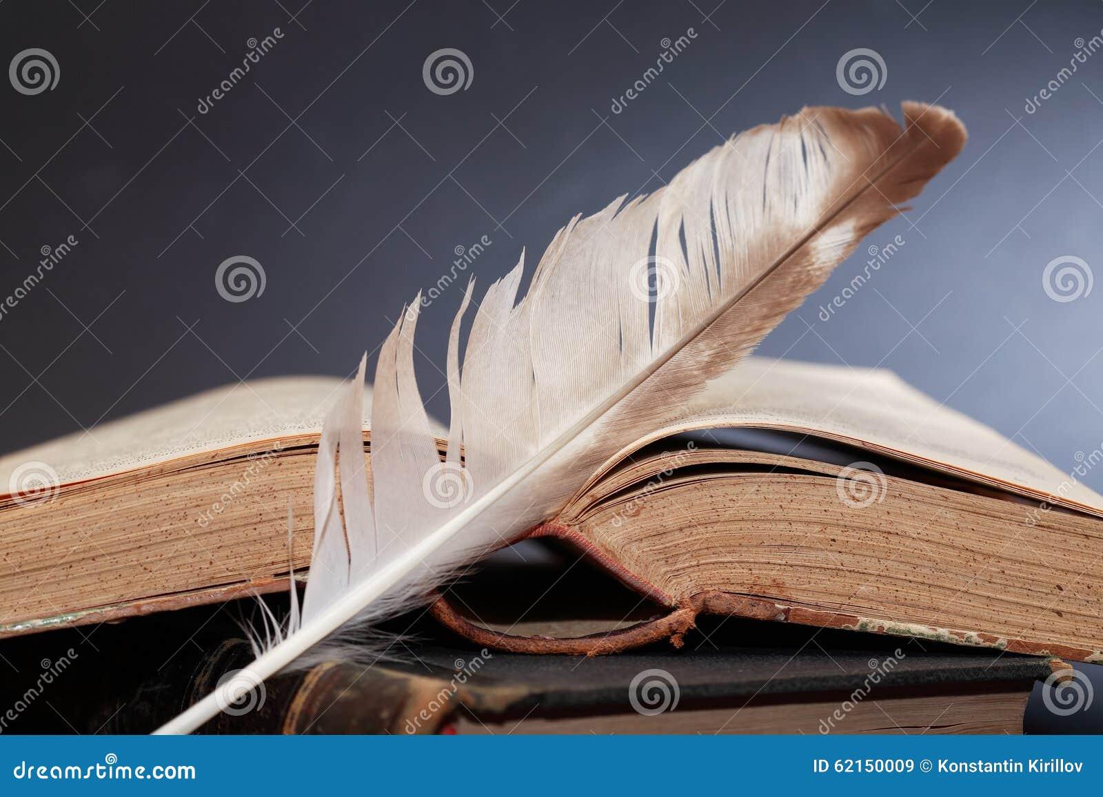 Concetto della letteratura