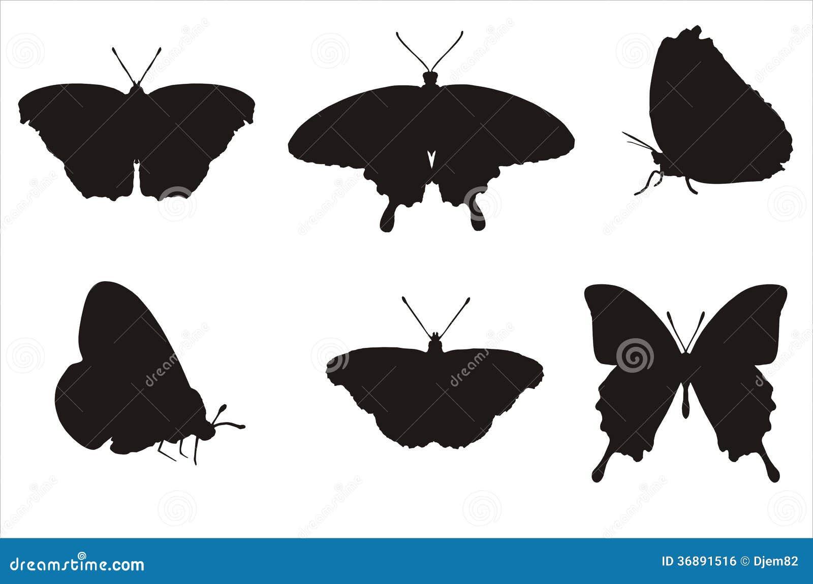 Download Concetto di biologia illustrazione di stock. Illustrazione di telaio - 36891516