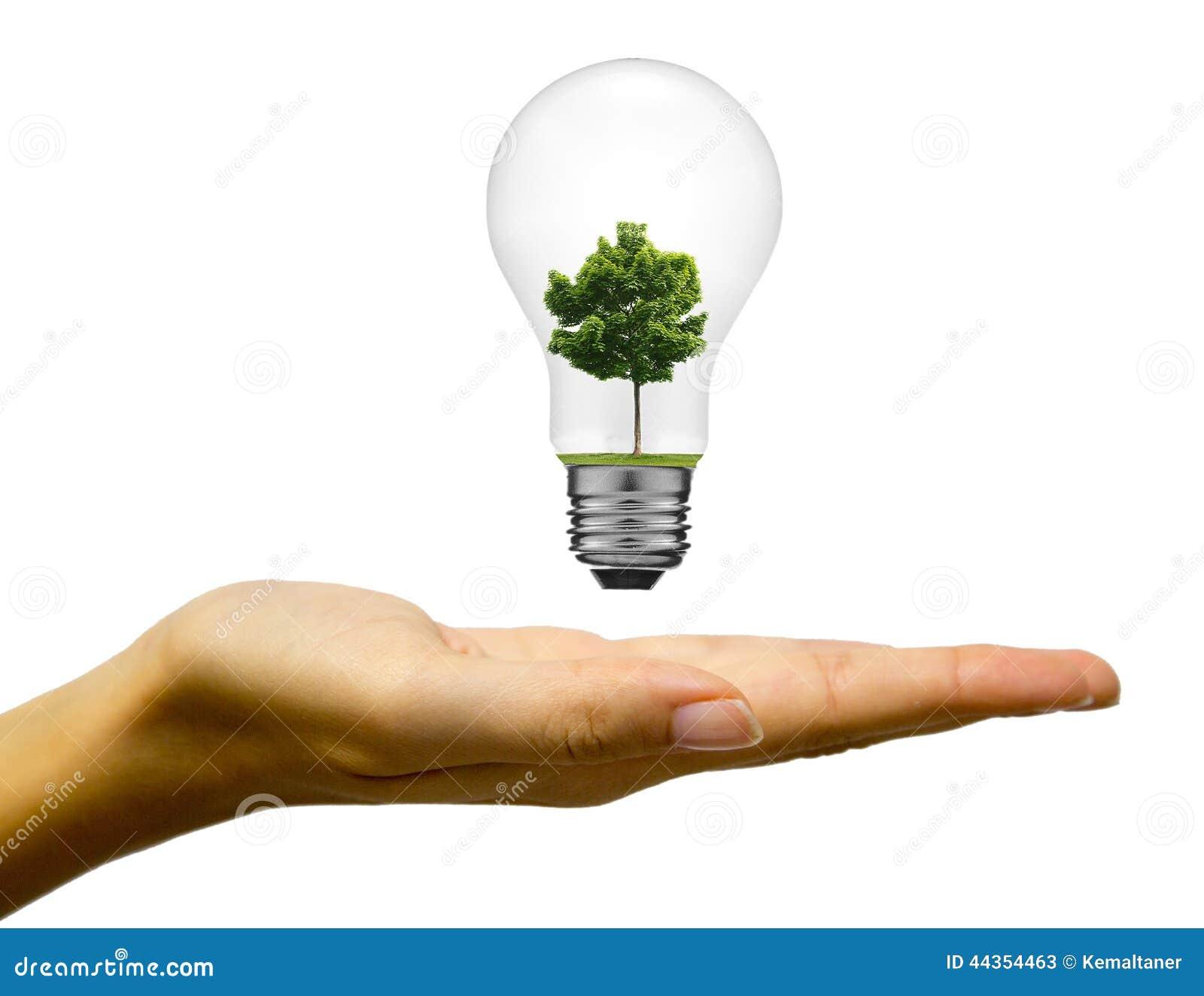 Concetto di energia di Eco