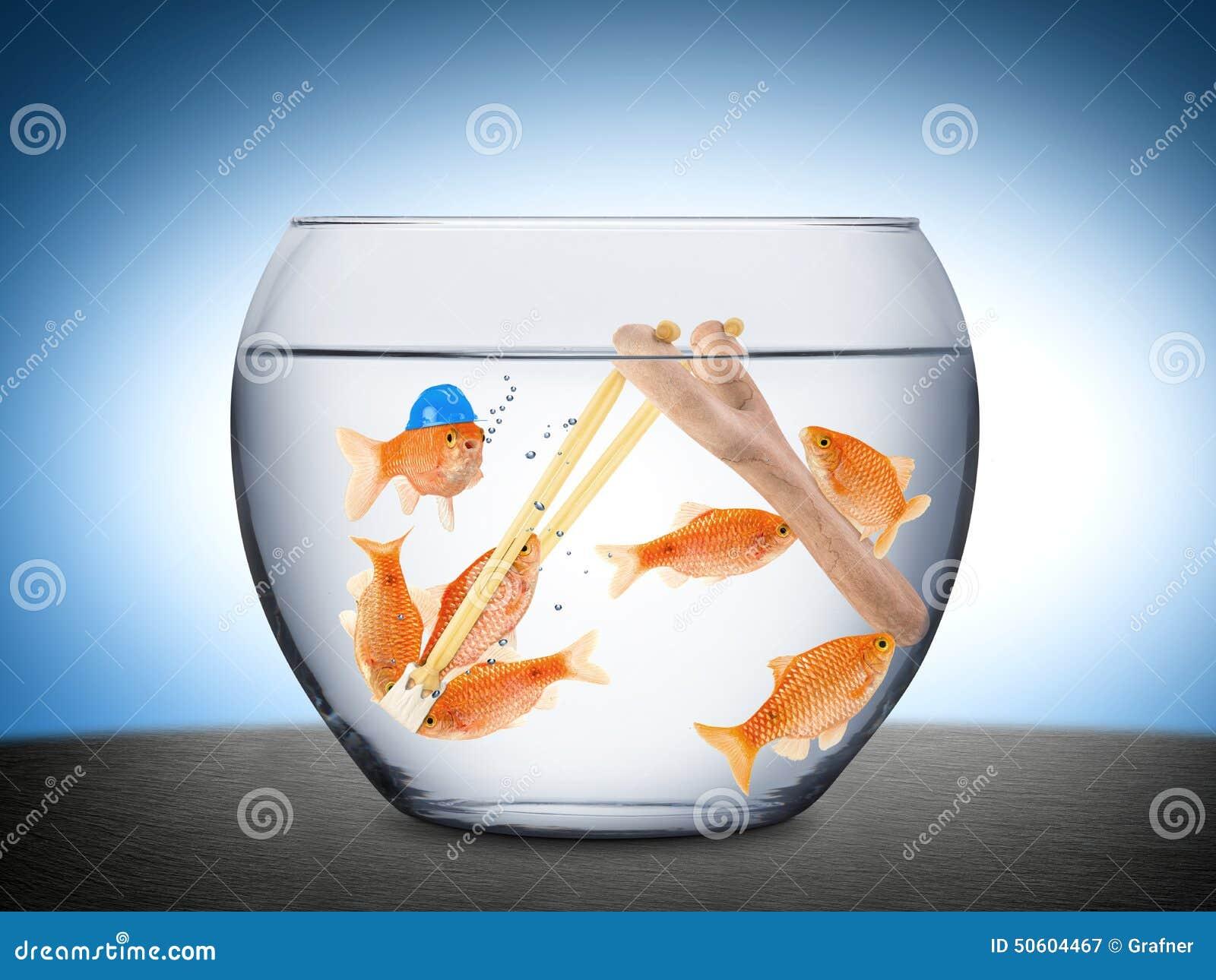 Concetto di lavoro di squadra del pesce fotografia stock - Pagina di colorazione del pesce ...