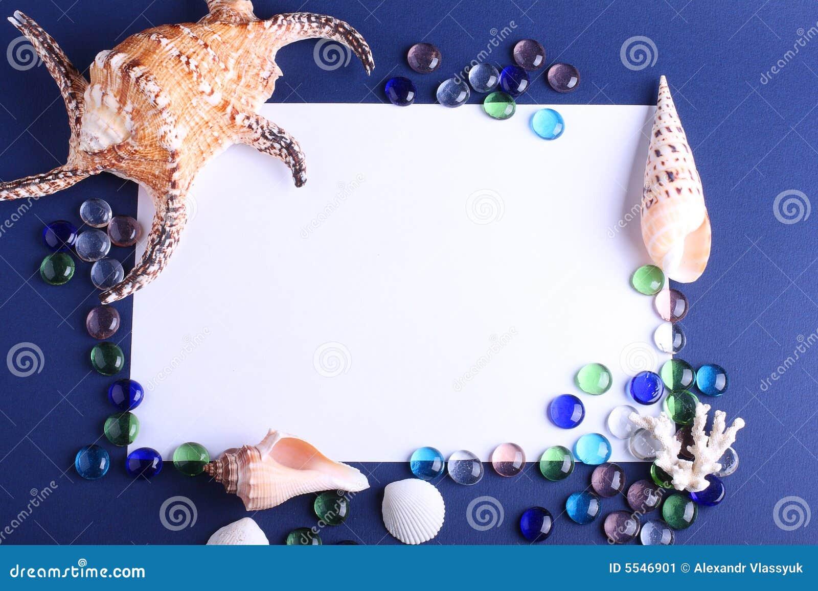 Conchas de berberecho