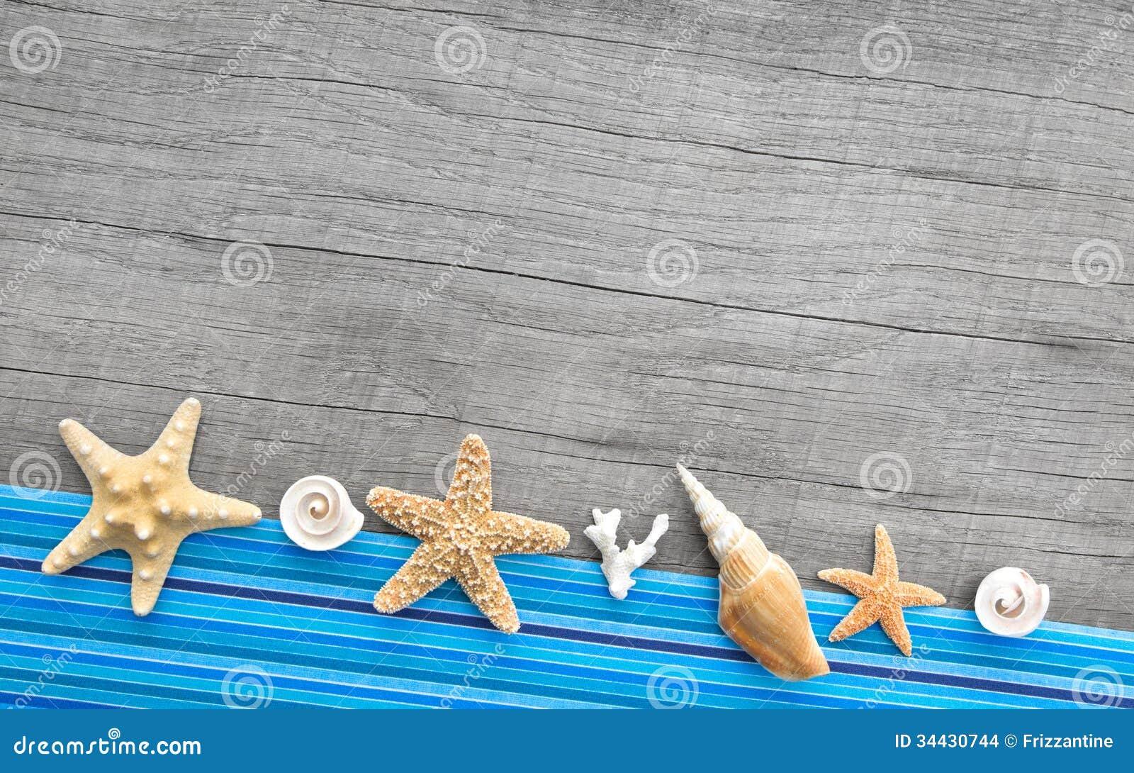 Fotografia De Stock Conchas Do Mar No Fundo Da Areia Image31610792 besides Search furthermore 224567767 also Collectionpdwn Purple Seashell Shirt in addition Stock Images Shells Collection Image16666404. on seashell pattern