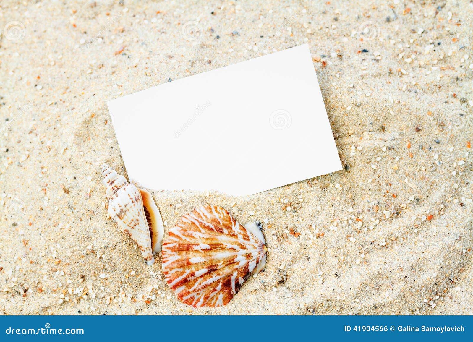 Conchas marinas con la tarjeta en blanco