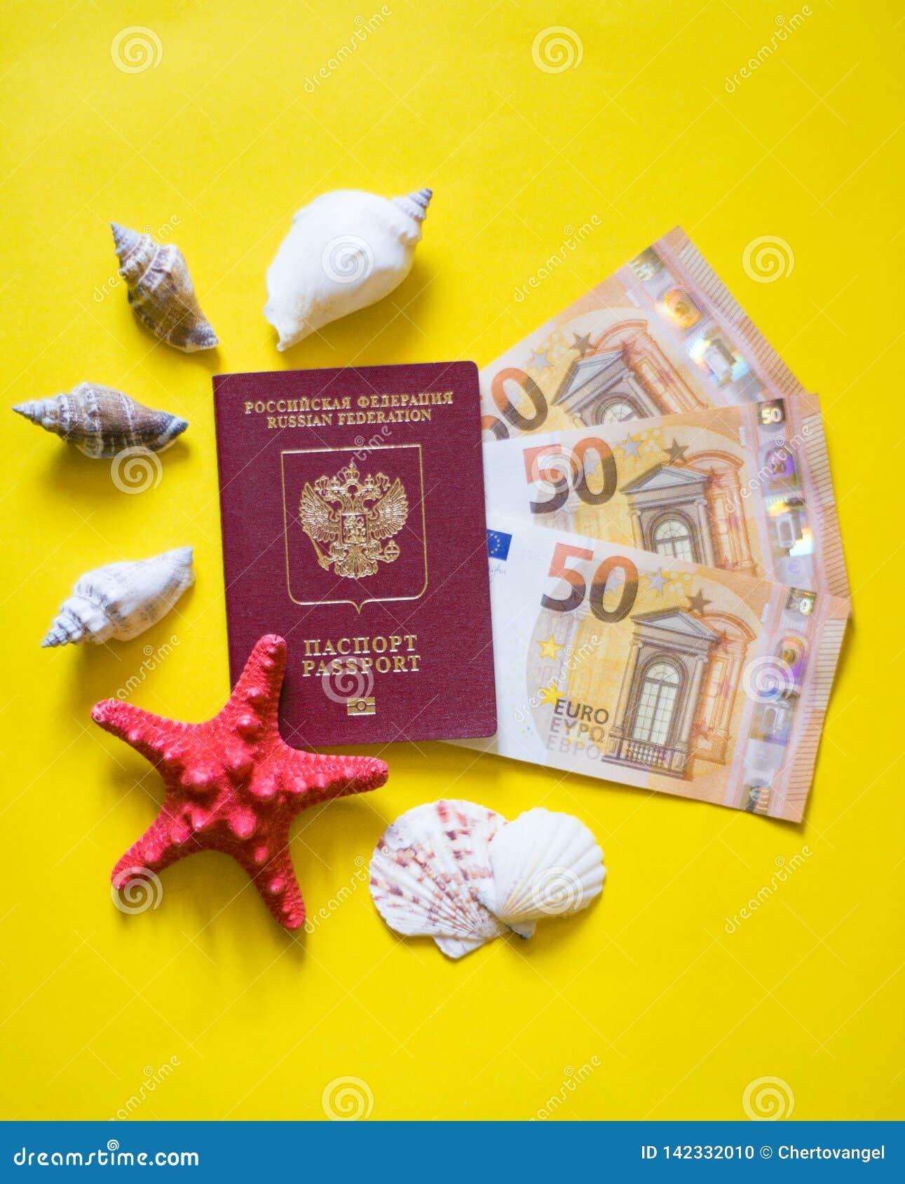 Conchas marinas euro del pasaporte en fondo amarillo como en la playa
