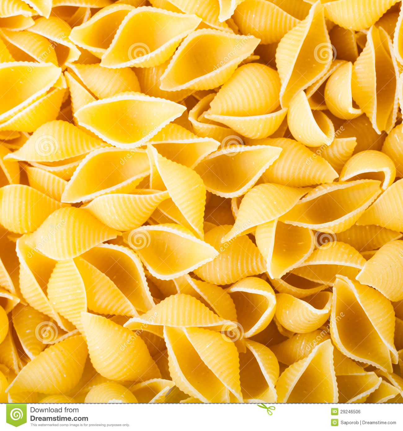 Download Conchiglie da massa foto de stock. Imagem de closeup - 29246506