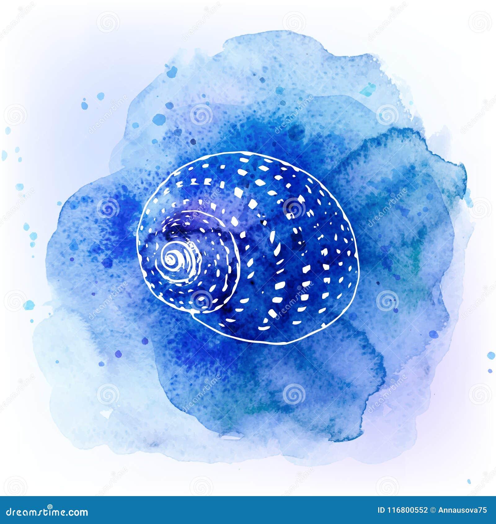 Conchiglie sul fondo del blu dell acquerello Priorità bassa del mare