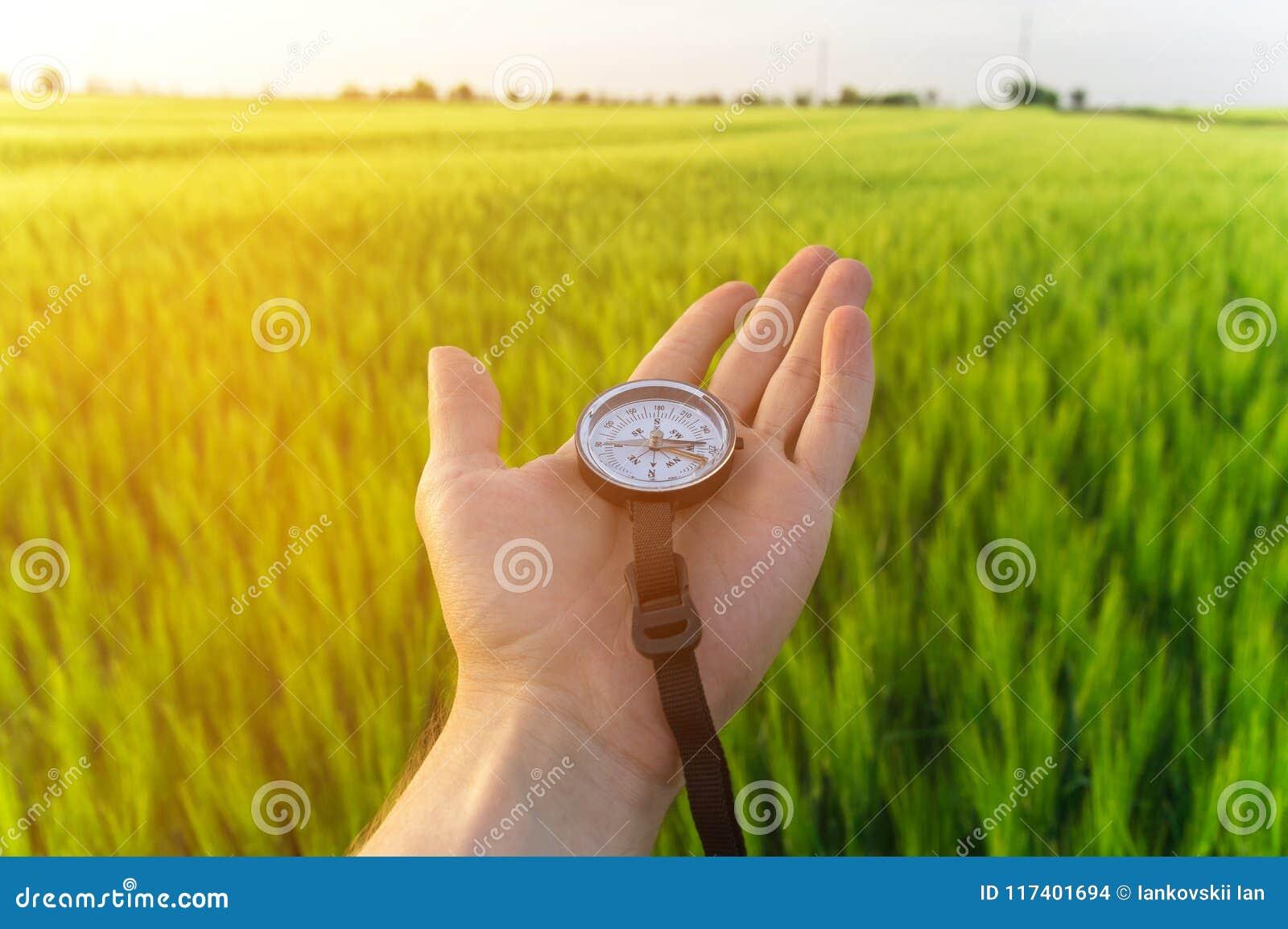 Conclusion d une direction en nature sur un champ de blé Une main du ` s d homme tient une boussole