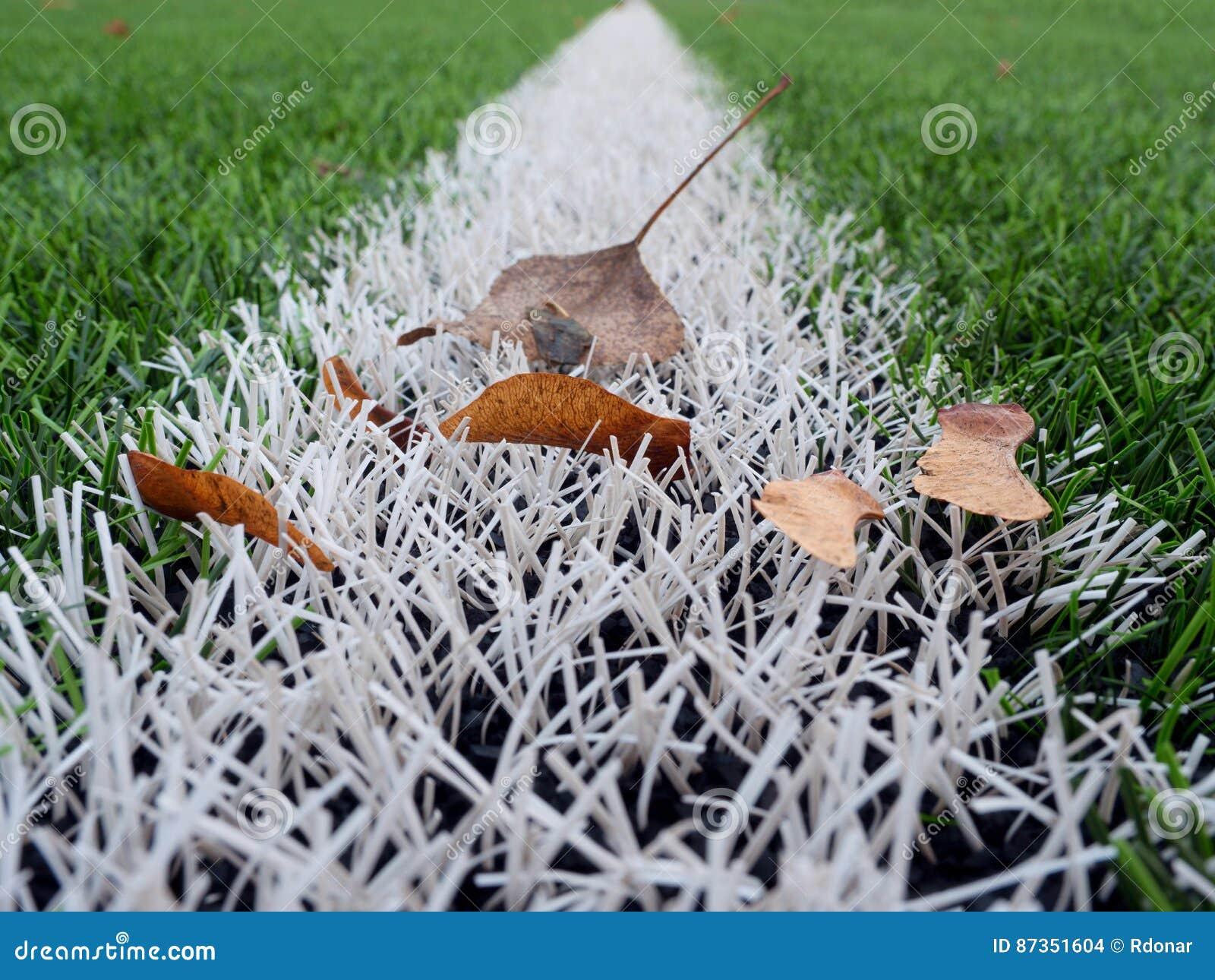 Conclusione della stagione di calcio tappeto erboso verde for Tappeto erboso a rotoli prezzi