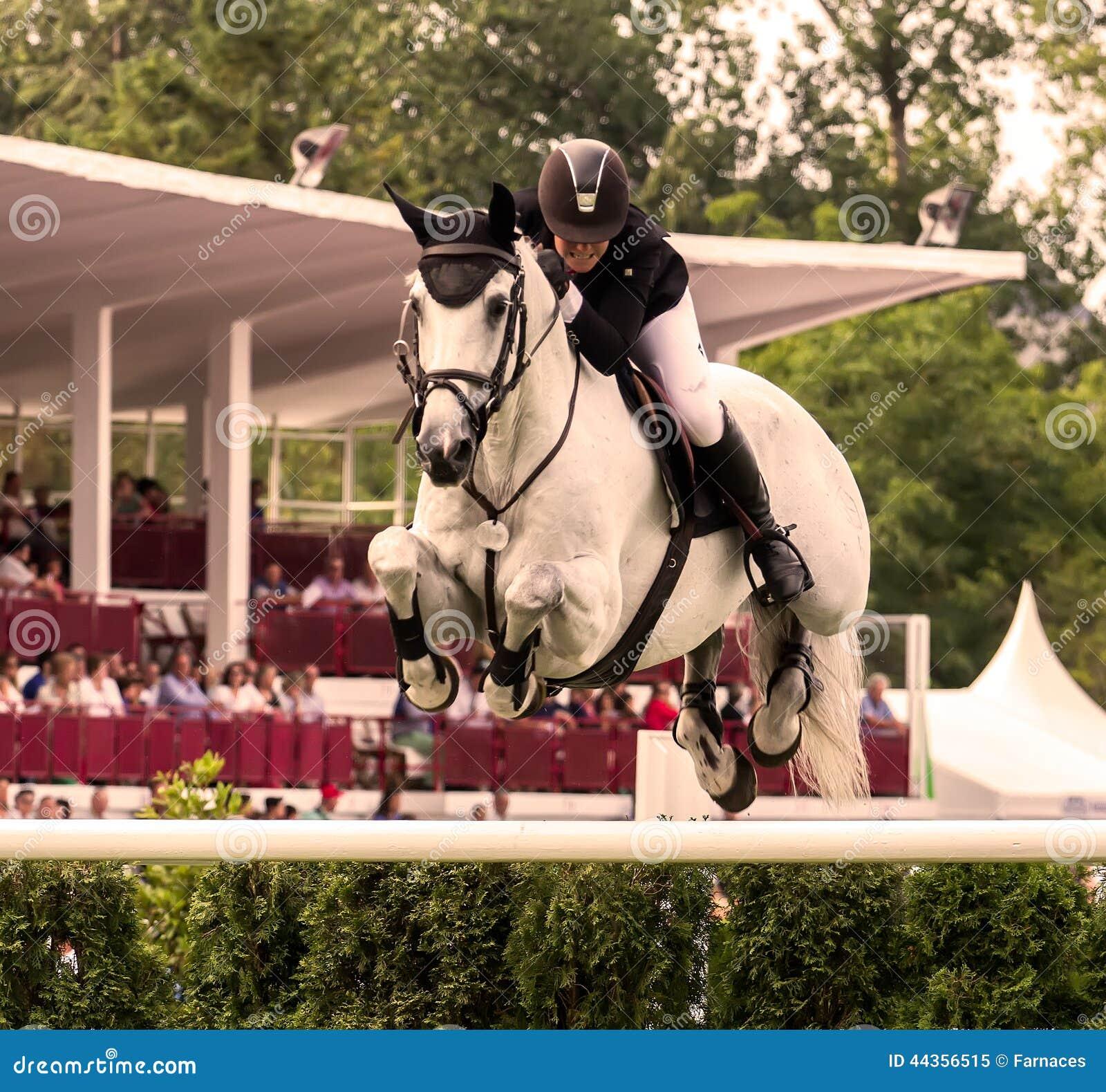 Concorrenza di salto del cavallo