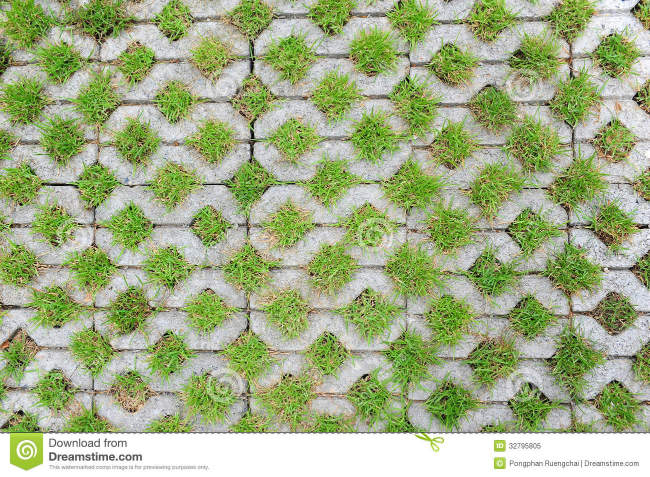 Concrete Block With Grass Stock Image Image Of Footpath