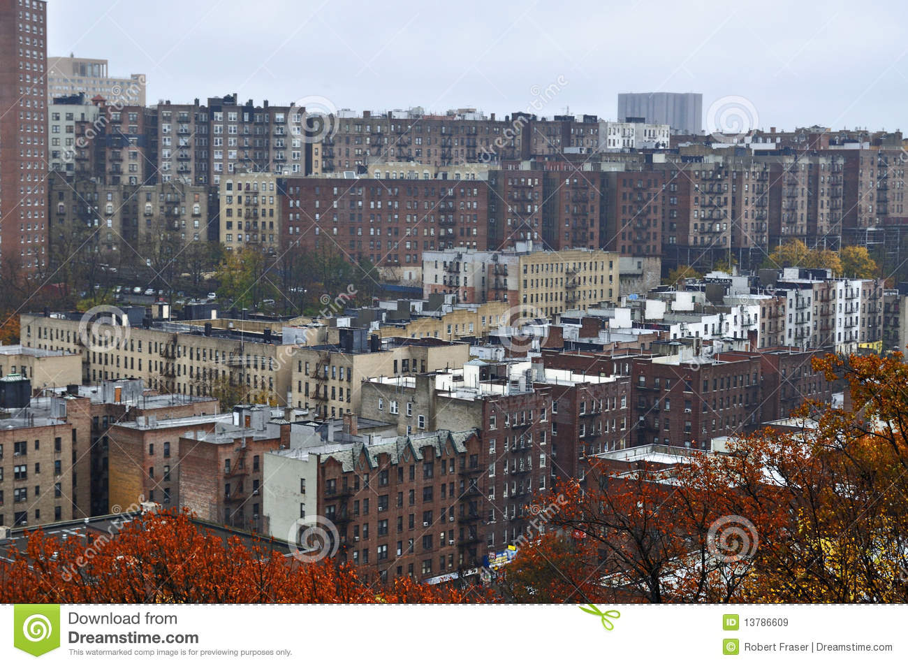 Concrete Jungle Harlem New York Royalty Free Stock Images Image 13786609