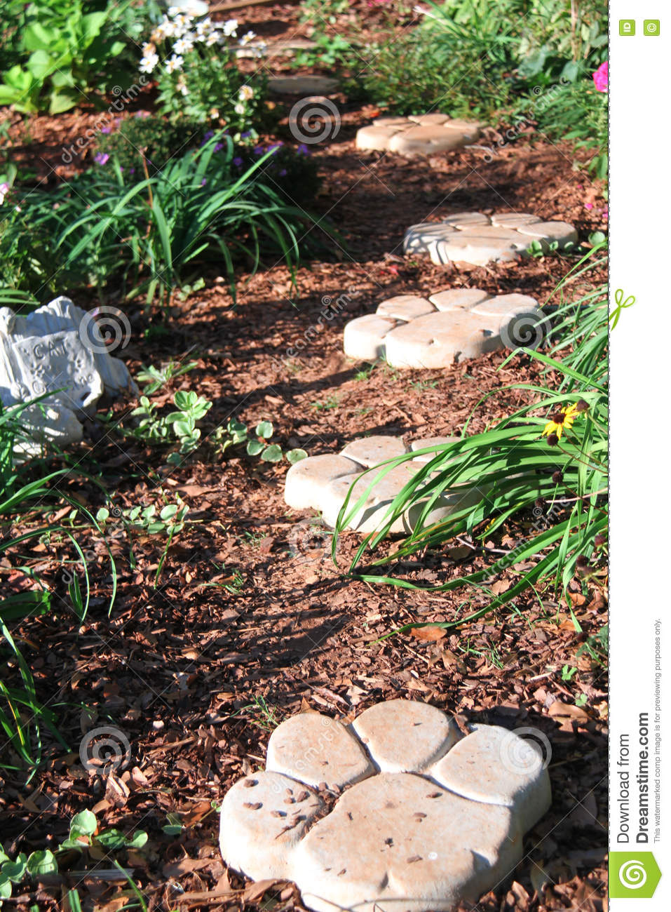 Concrete Paw Print Path In The Garden Stock Image - Image of bloom ...