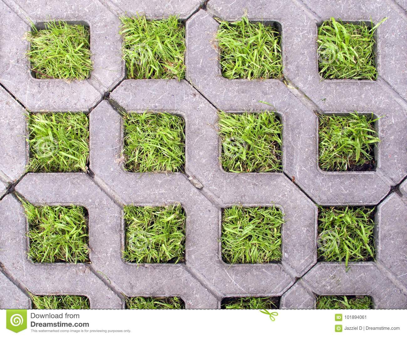 Concrete Square Cells With Living Grass