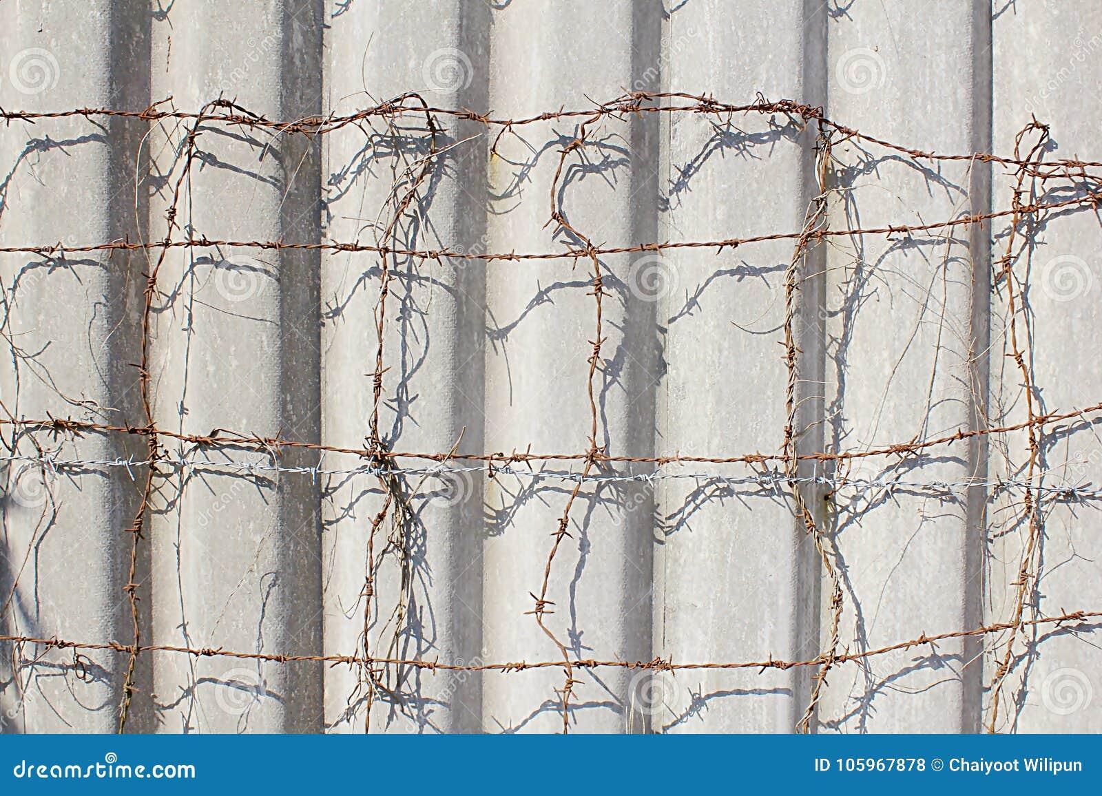 Dorable Chicken Wire Tomato Cage Ensign - Electrical Diagram Ideas ...
