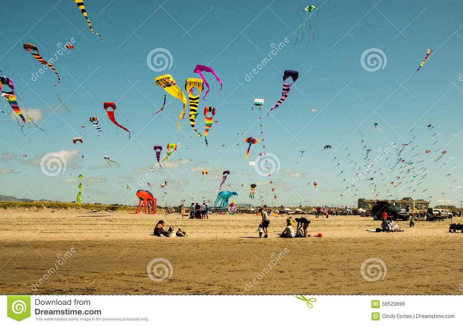 Concurrence de vol de cerf-volant à la plage