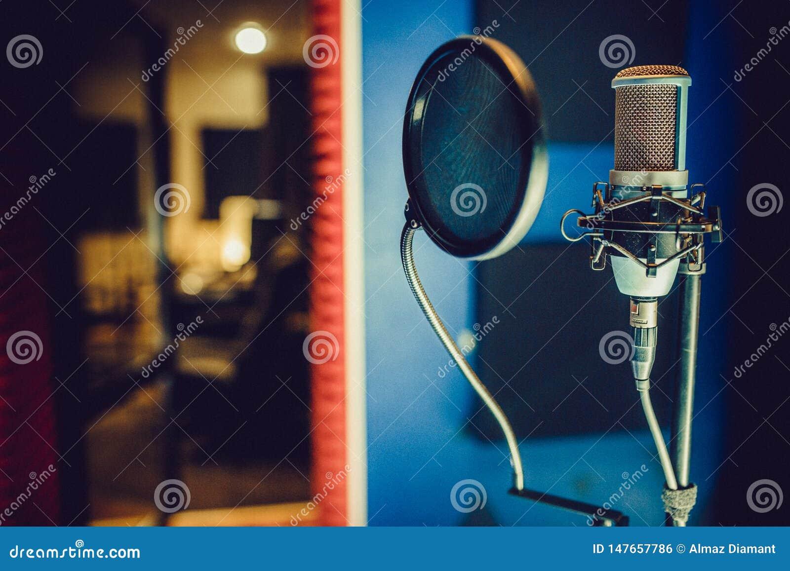 Condenser microphone in a recording studio, pop filter