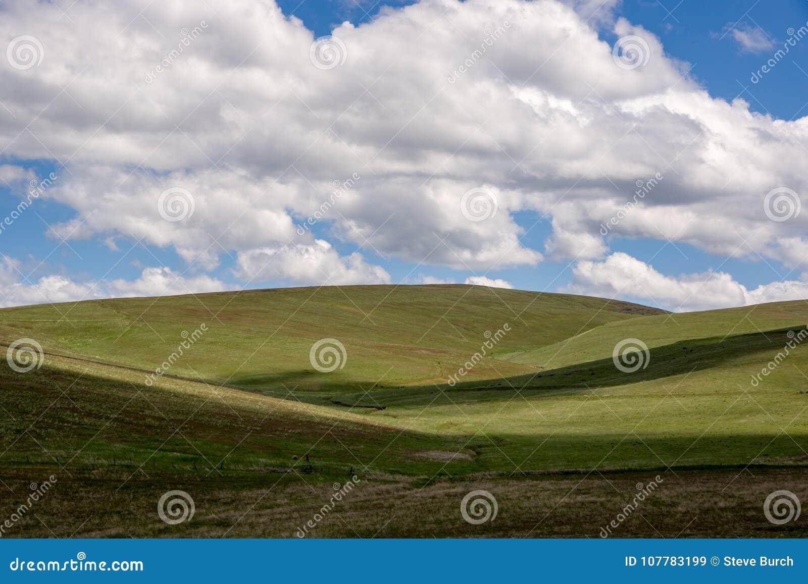 Condon-Hügel