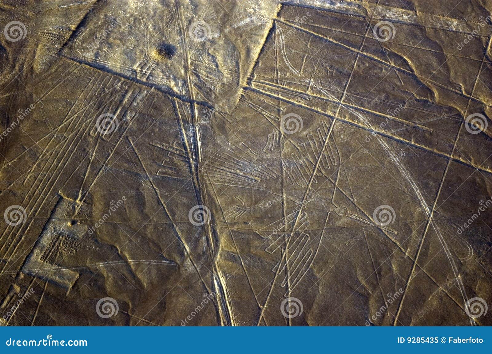 Condor, Lijnen Nazca in Peru