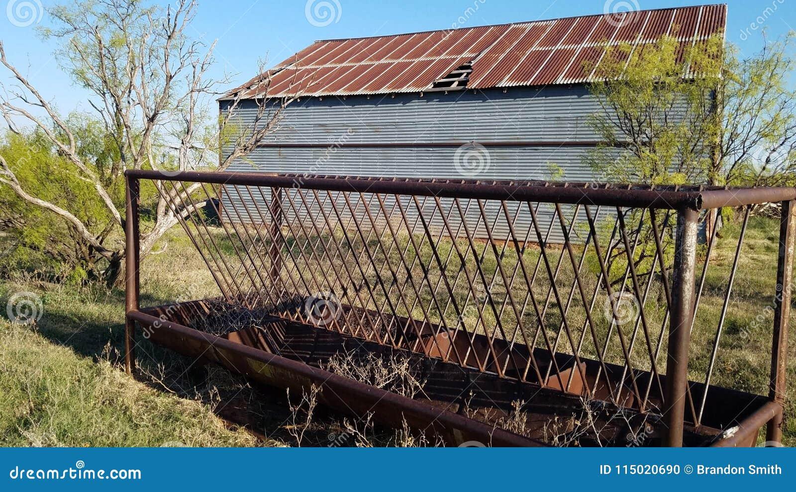 Conducteur de bétail derrière Texas Hay Barn du nord