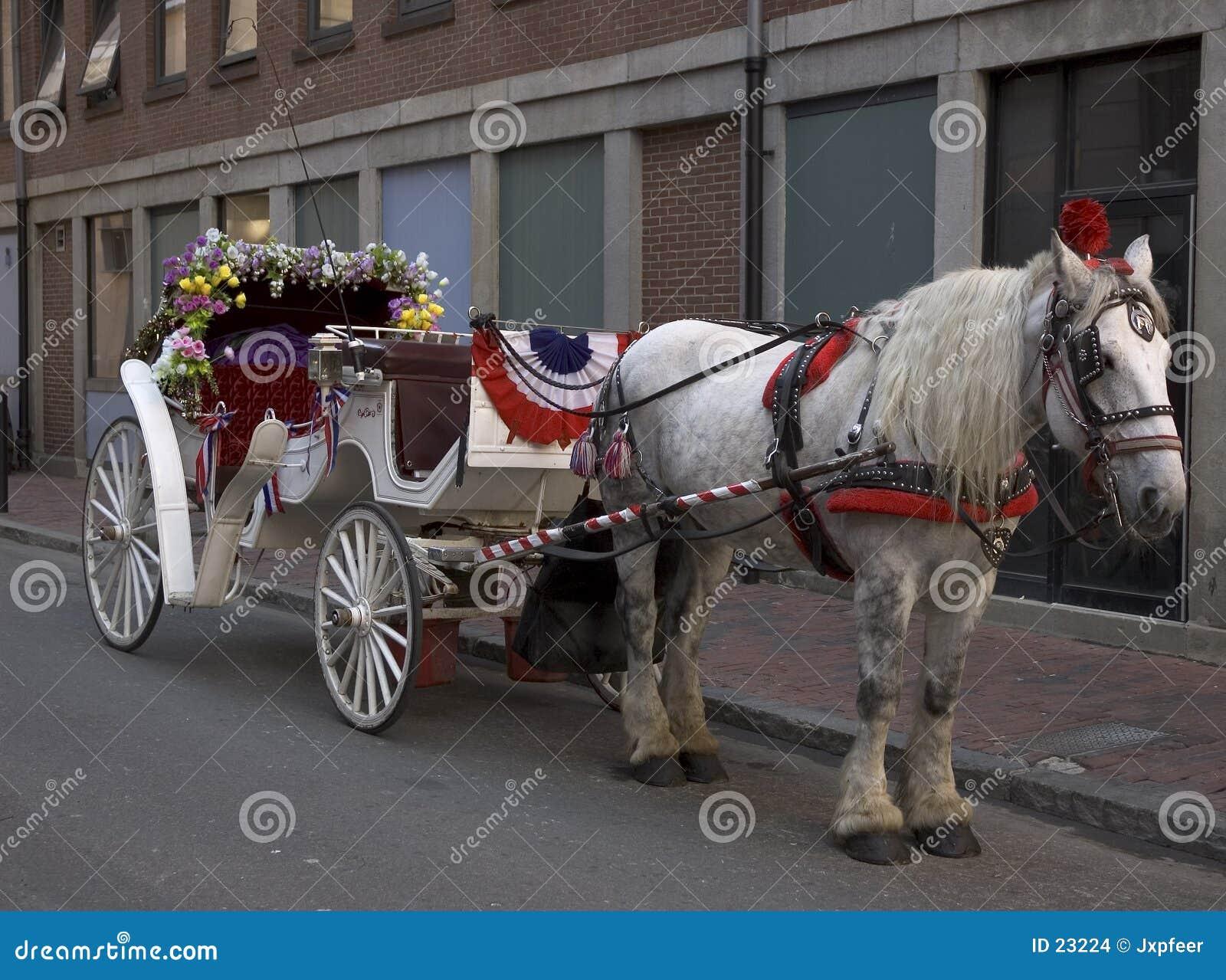 Conduite de chariot