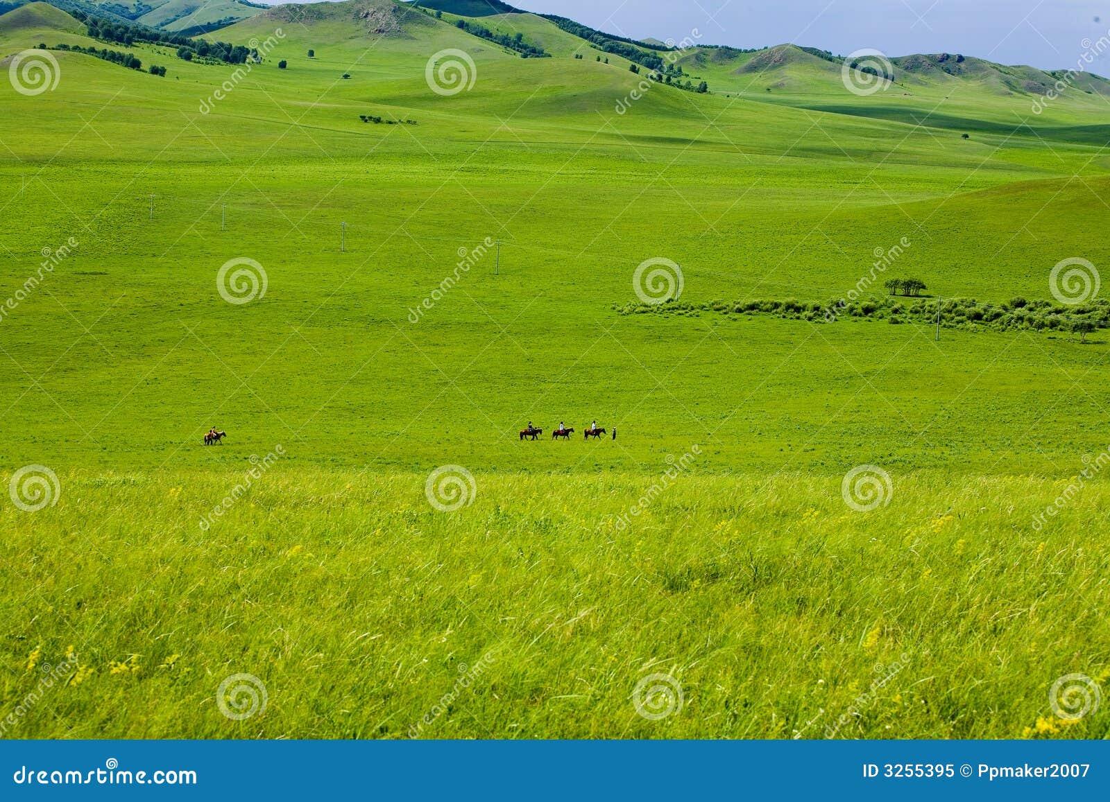 Conduite sur la prairie grande