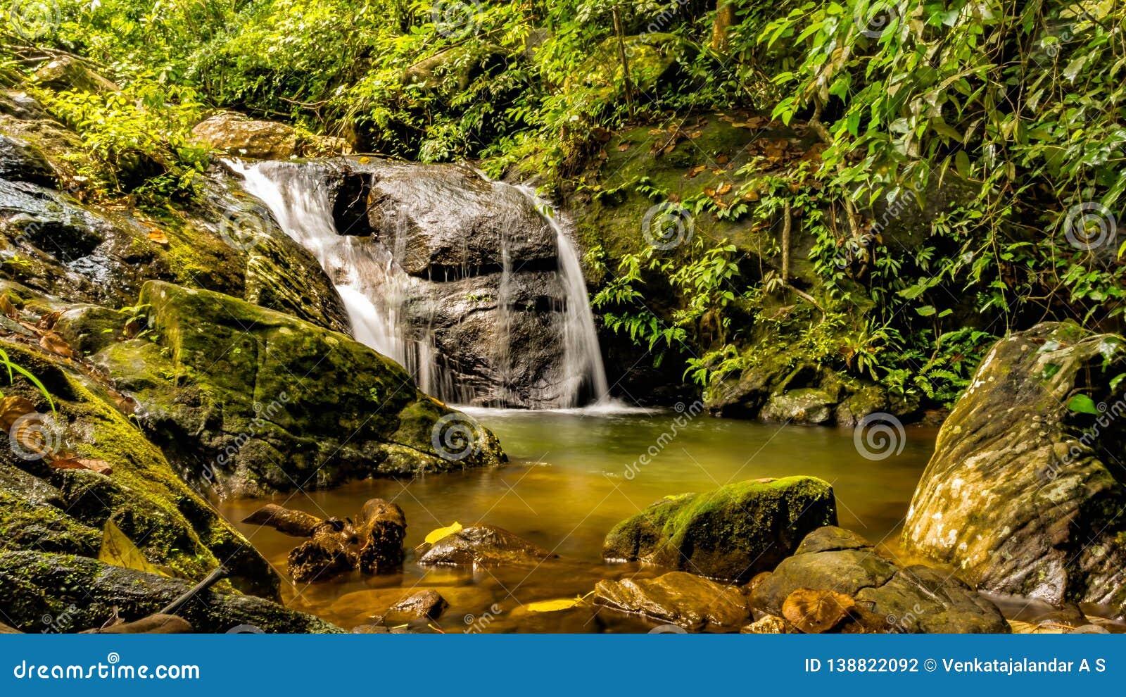 Conectando en cascada - cascadas, Kerala la India