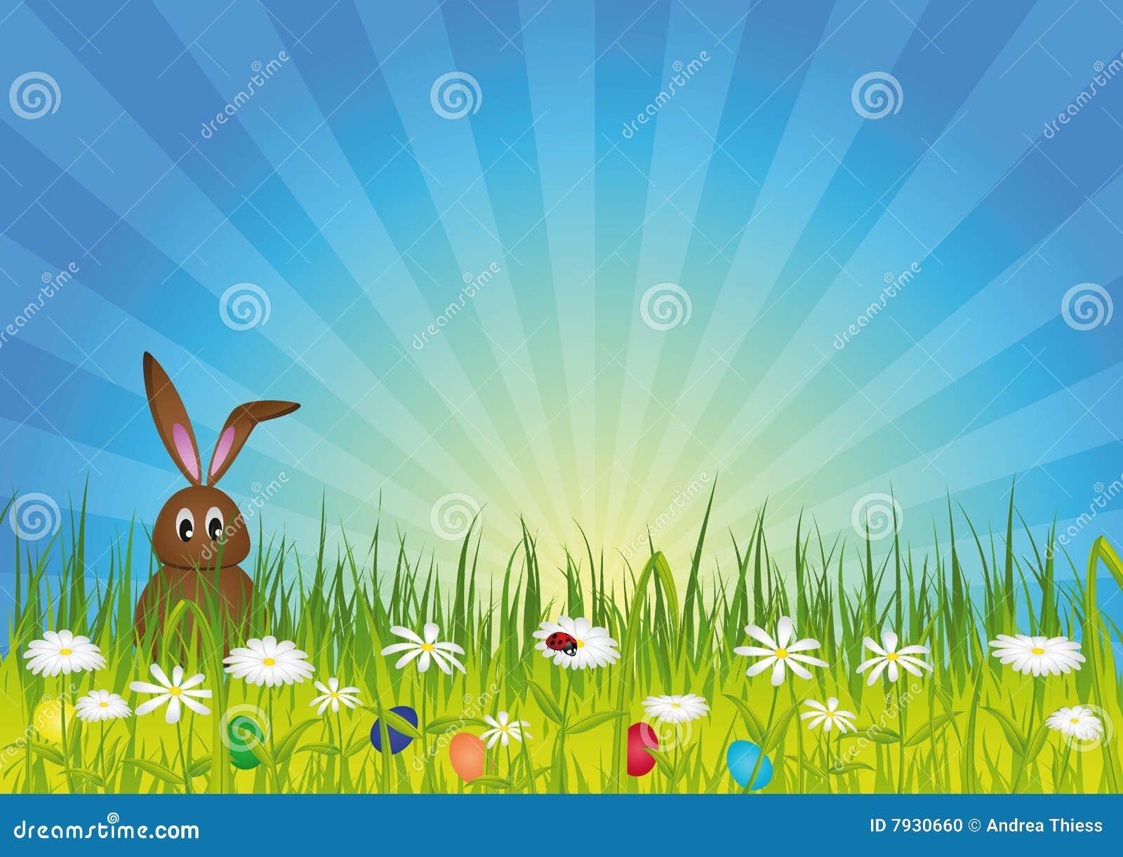 Conejito de pascua en prado verde