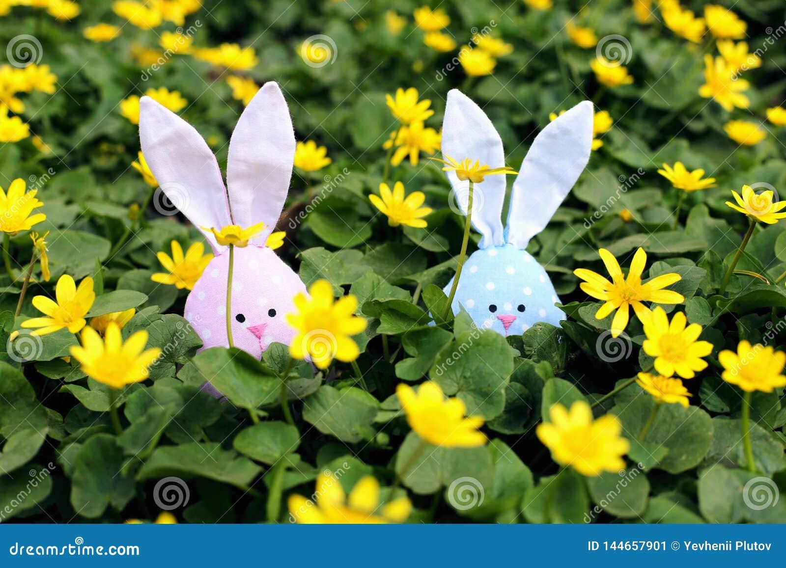 Conejito de pascua ocultado en un prado de la flor, flores amarillas de la primavera en un prado de la hierba verde Primavera del