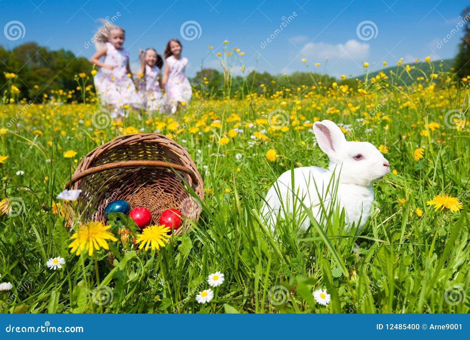 Conejito de pascua que mira el huevo buscar