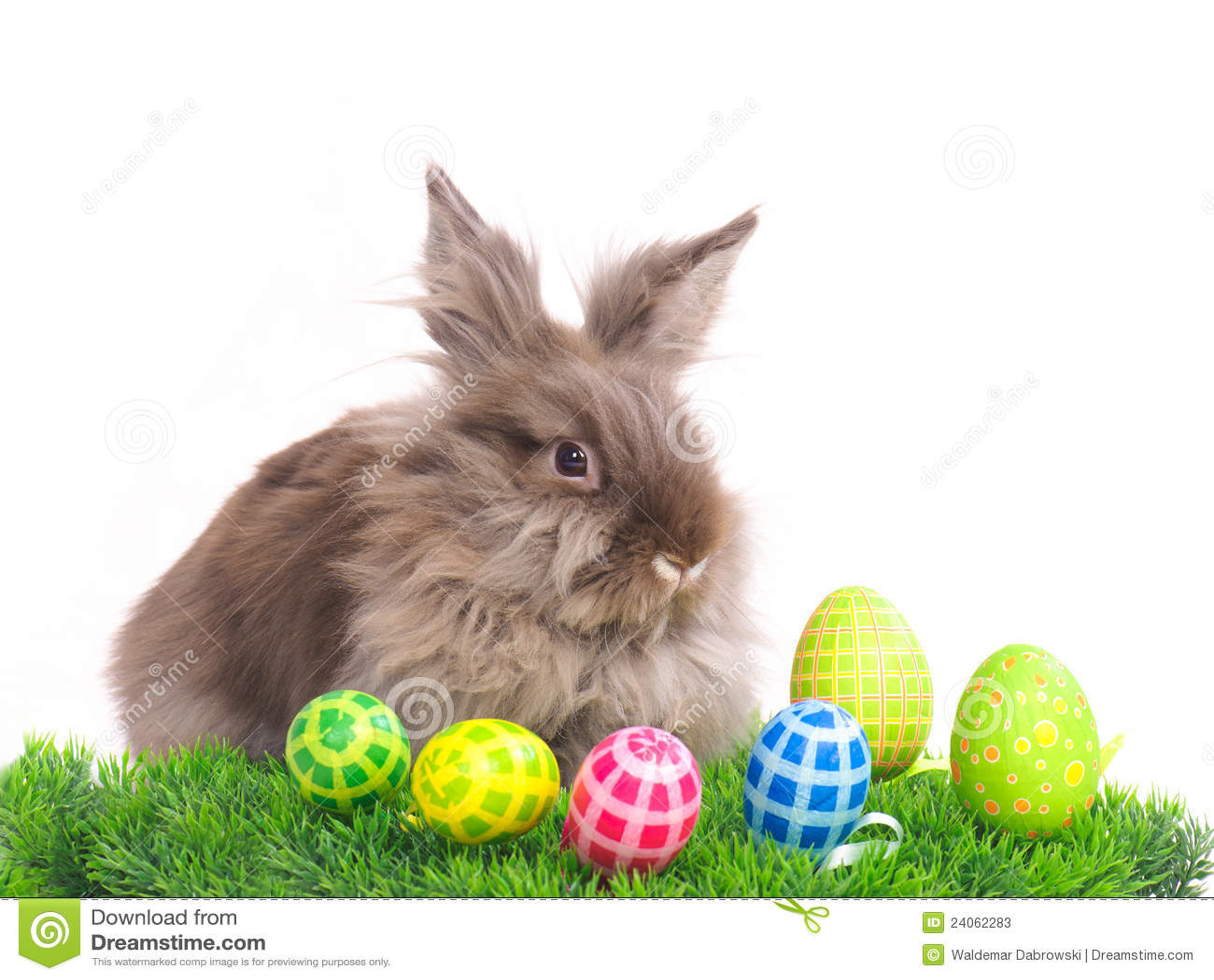 Conejo de pascua con los huevos fotos de archivo imagen for El conejo de pascua