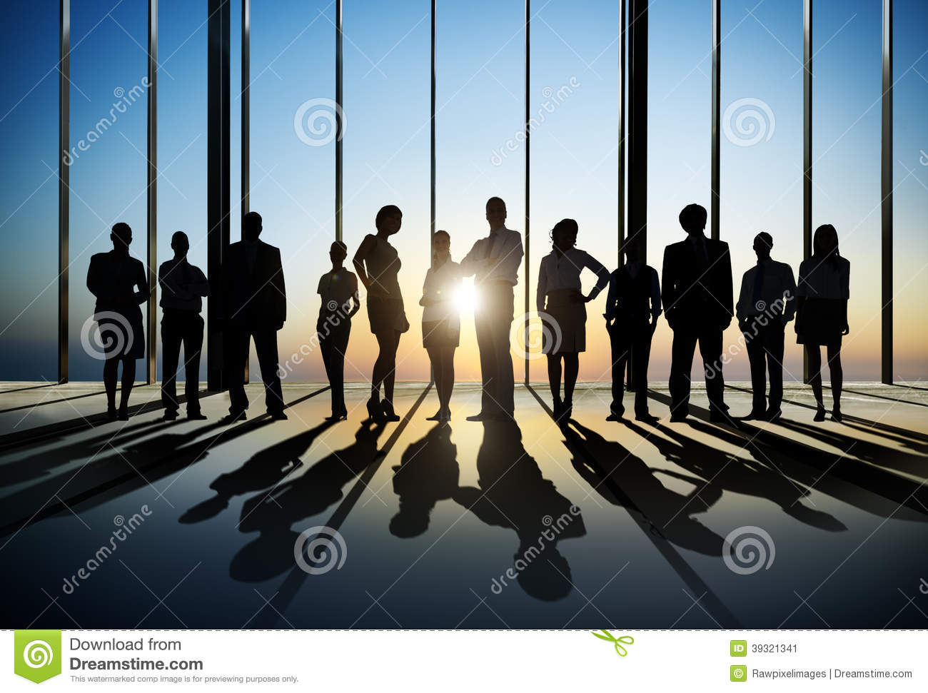 Confident Silhouette Of Business People Posing For The Camera In