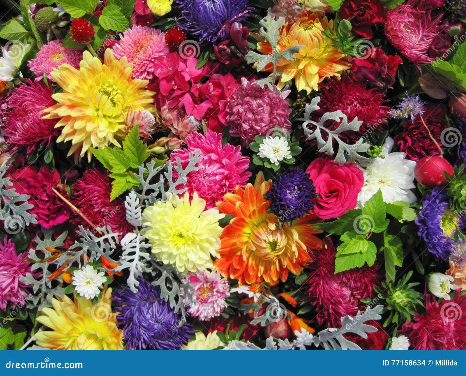 Configuration de fleurs colorée