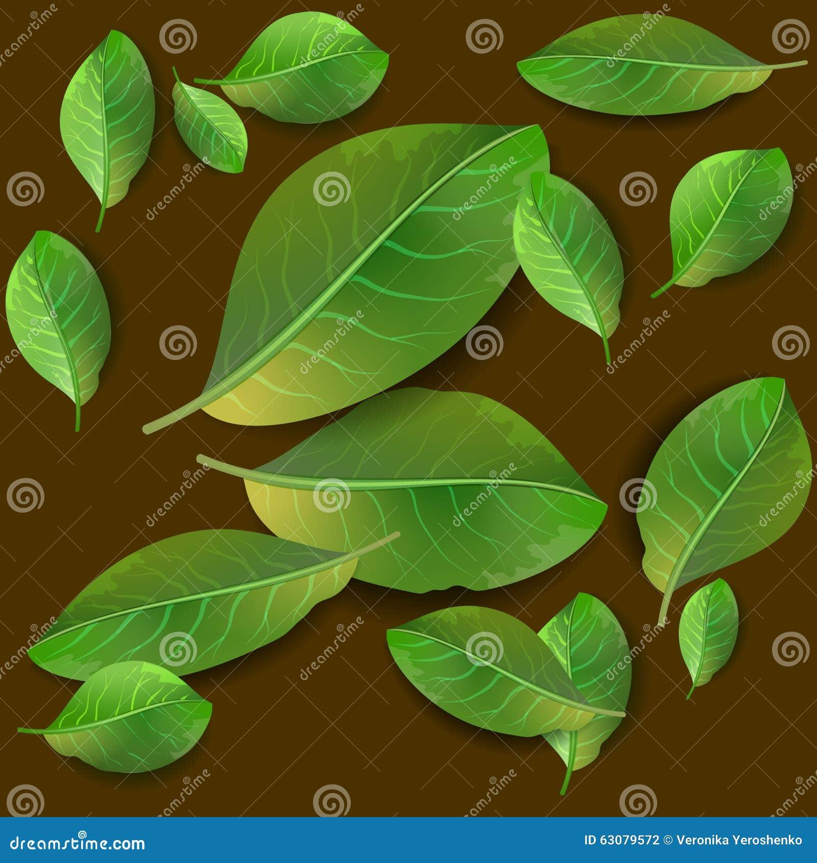 Download Configuration Sans Joint Avec Les Lames Vertes Illustration de Vecteur - Illustration du composition, papier: 63079572